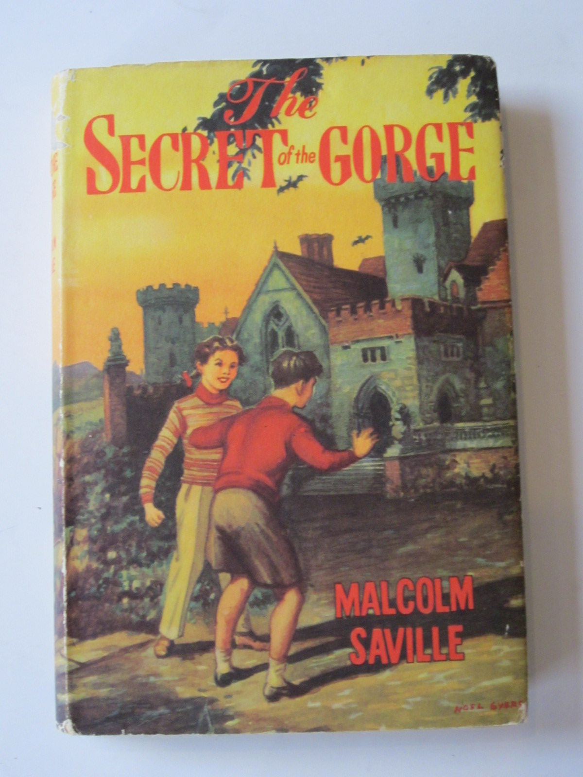 Photo of THE SECRET OF THE GORGE- Stock Number: 1308245