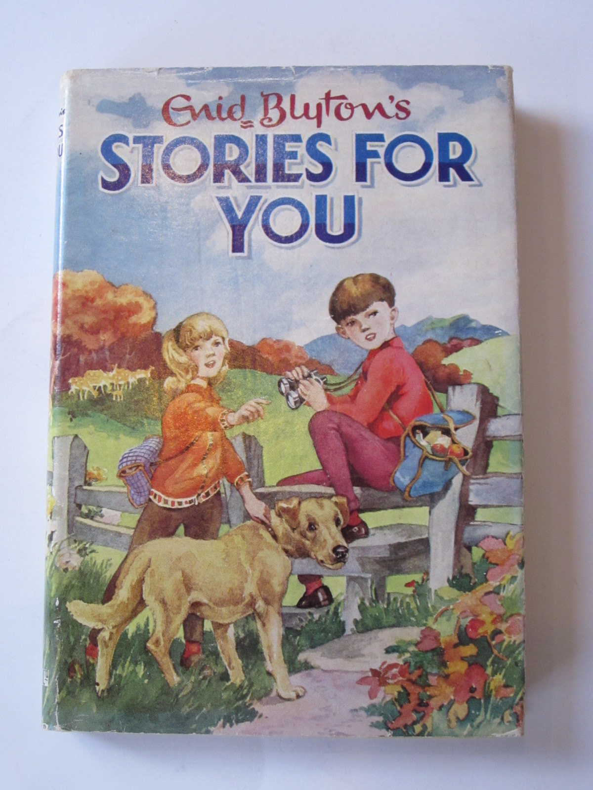 Photo of STORIES FOR YOU- Stock Number: 1308251