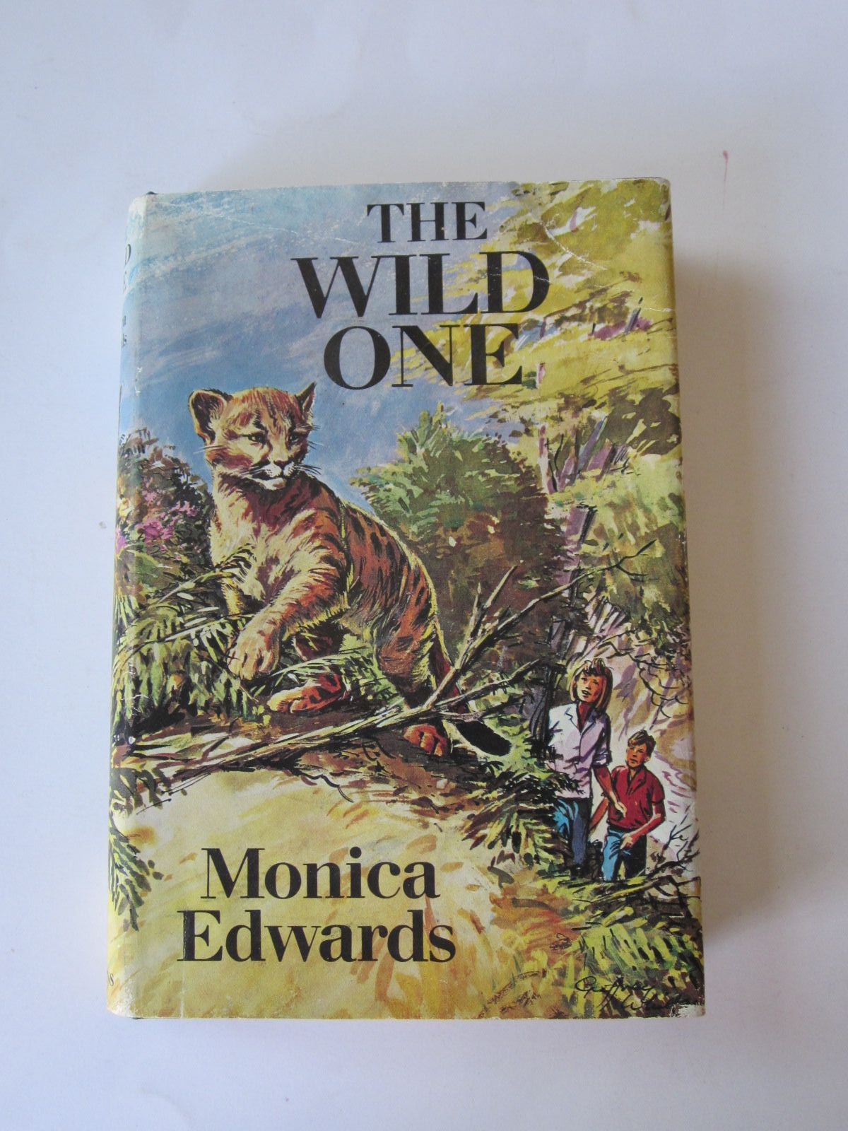 Photo of THE WILD ONE written by Edwards, Monica illustrated by Whittam, Geoffrey published by Collins (STOCK CODE: 1308751)  for sale by Stella & Rose's Books