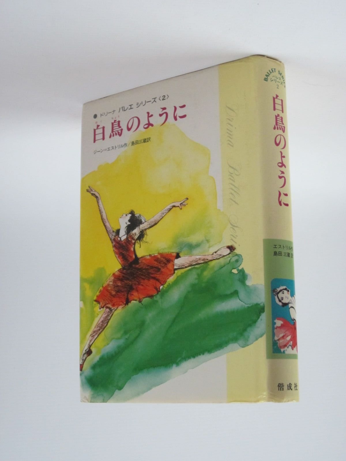 Photo of DRINA'S DANCING YEAR (IN JAPANESE)- Stock Number: 1309951