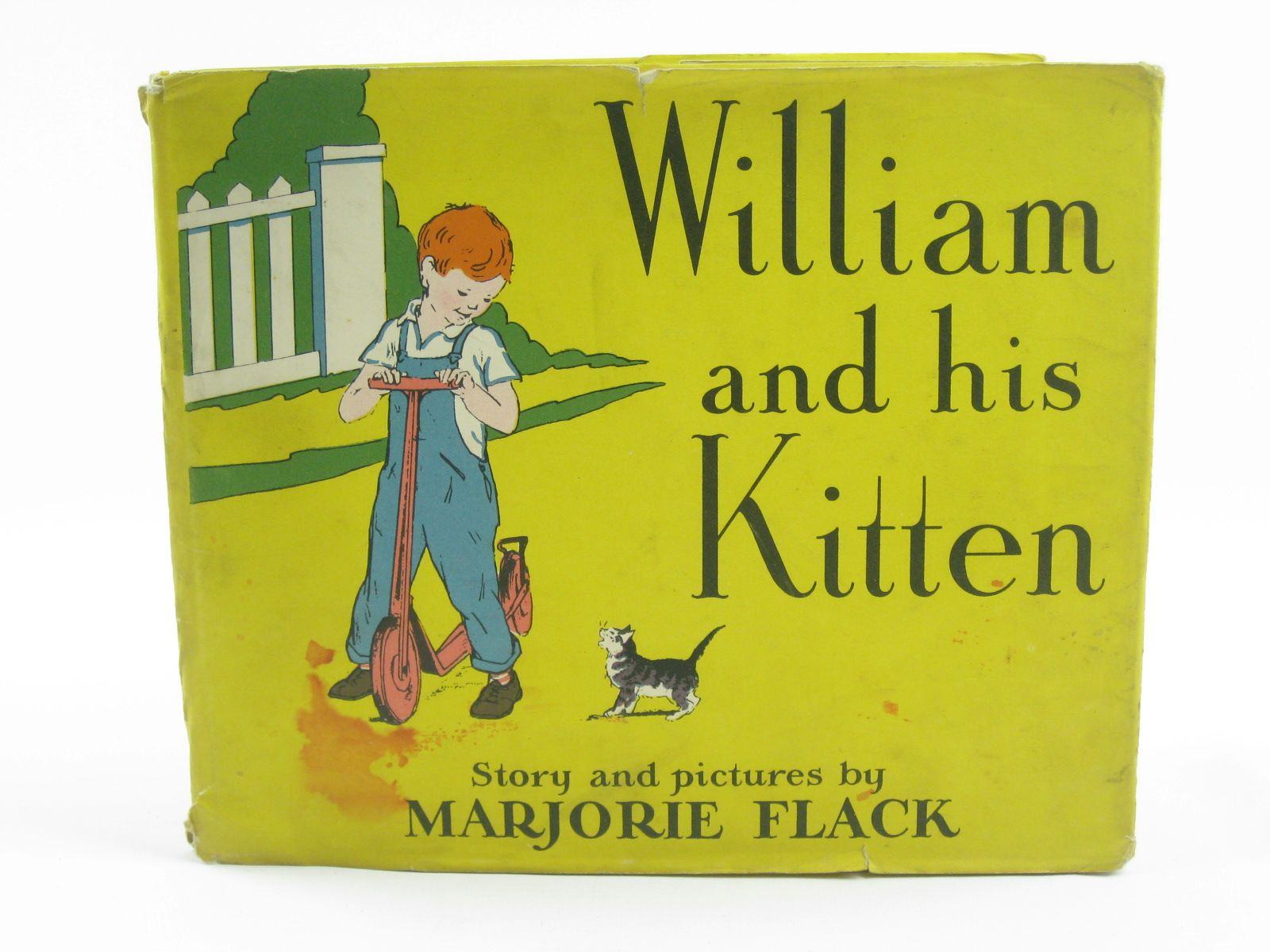 Photo of WILLIAM AND HIS KITTEN- Stock Number: 1310286