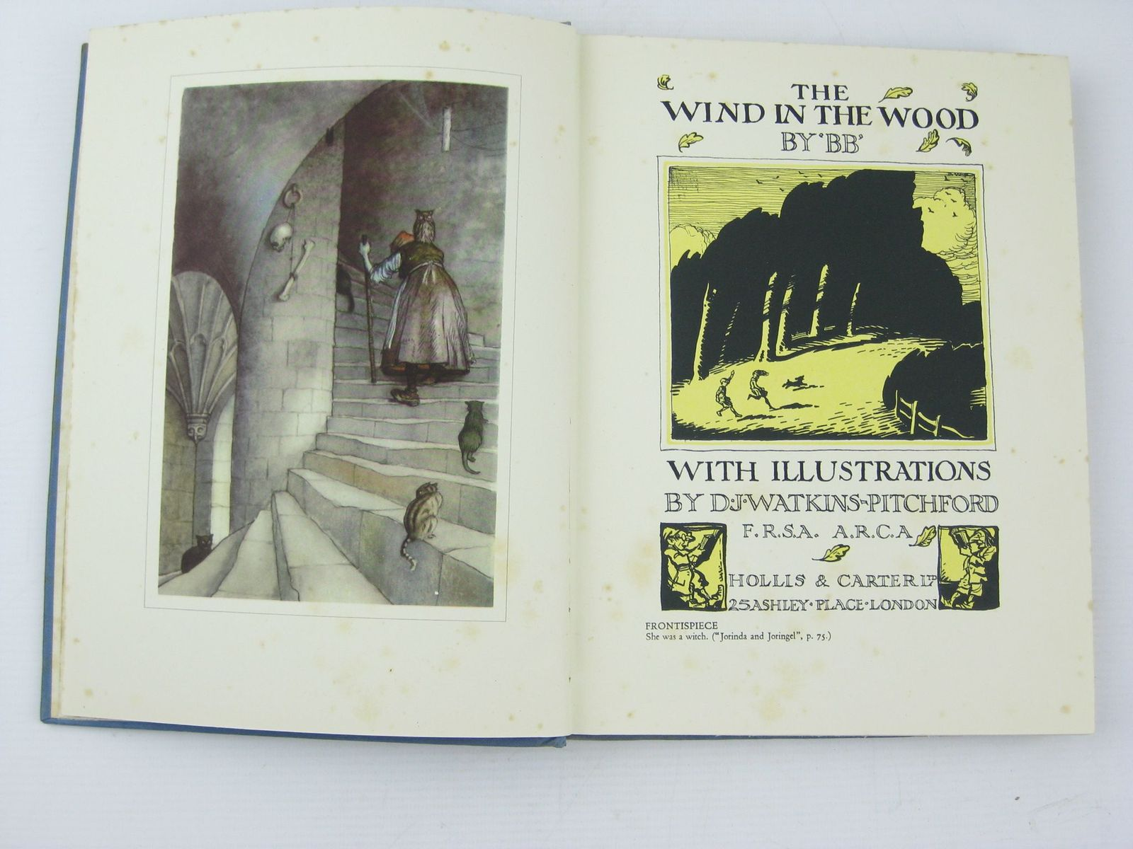 Photo of THE WIND IN THE WOOD written by BB,  illustrated by BB,  published by Hollis & Carter (STOCK CODE: 1311475)  for sale by Stella & Rose's Books
