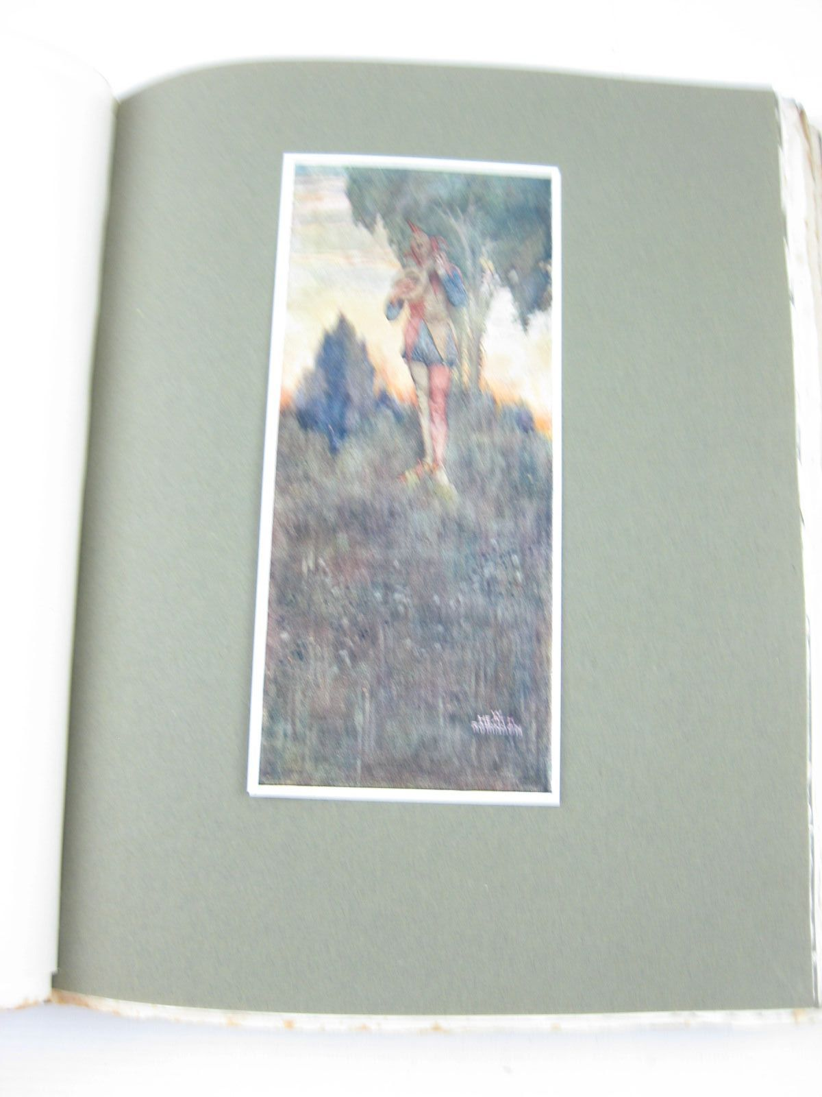 Photo of SHAKESPEARE'S COMEDY OF TWELFTH NIGHT OR WHAT YOU WILL written by Shakespeare, William illustrated by Robinson, W. Heath published by Hodder & Stoughton (STOCK CODE: 1314200)  for sale by Stella & Rose's Books