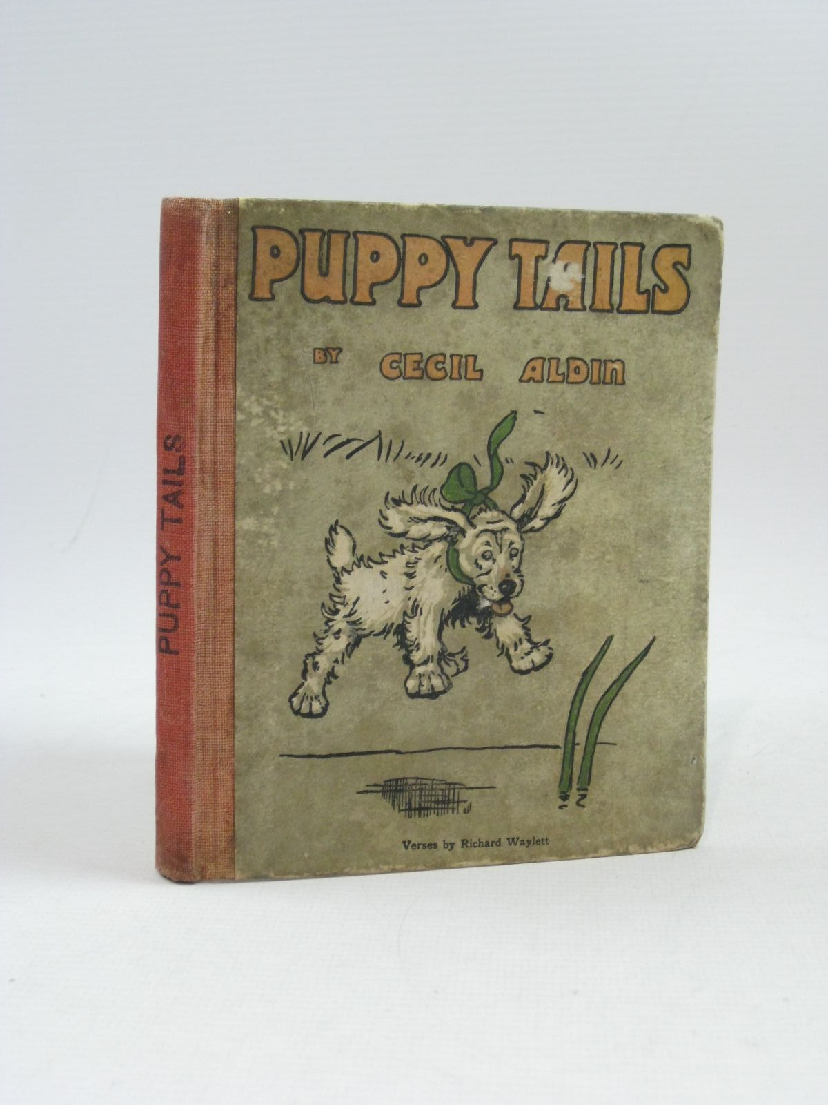 Photo of PUPPY TAILS- Stock Number: 1314820
