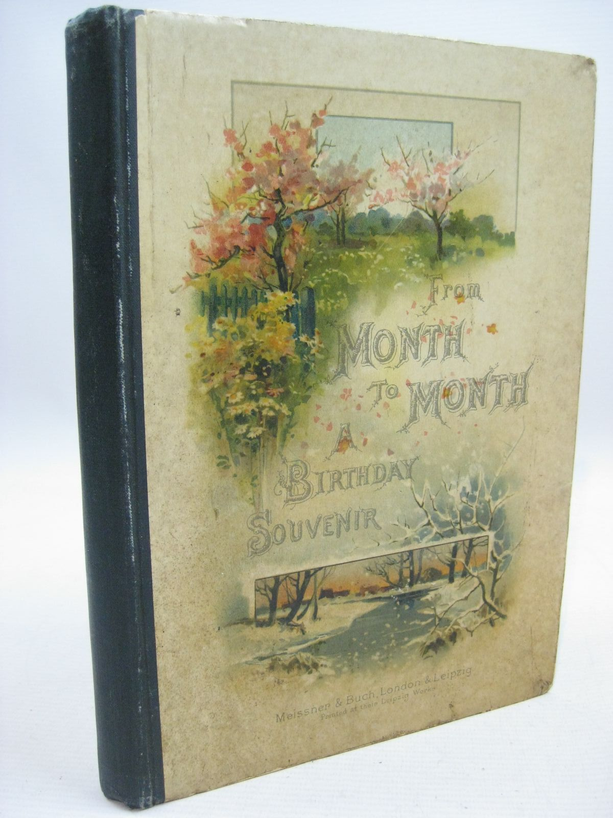 Photo of FROM MONTH TO MONTH written by Haite, J.J. Radford, Caroline illustrated by Haite, George C. published by Meissner & Buch (STOCK CODE: 1315516)  for sale by Stella & Rose's Books