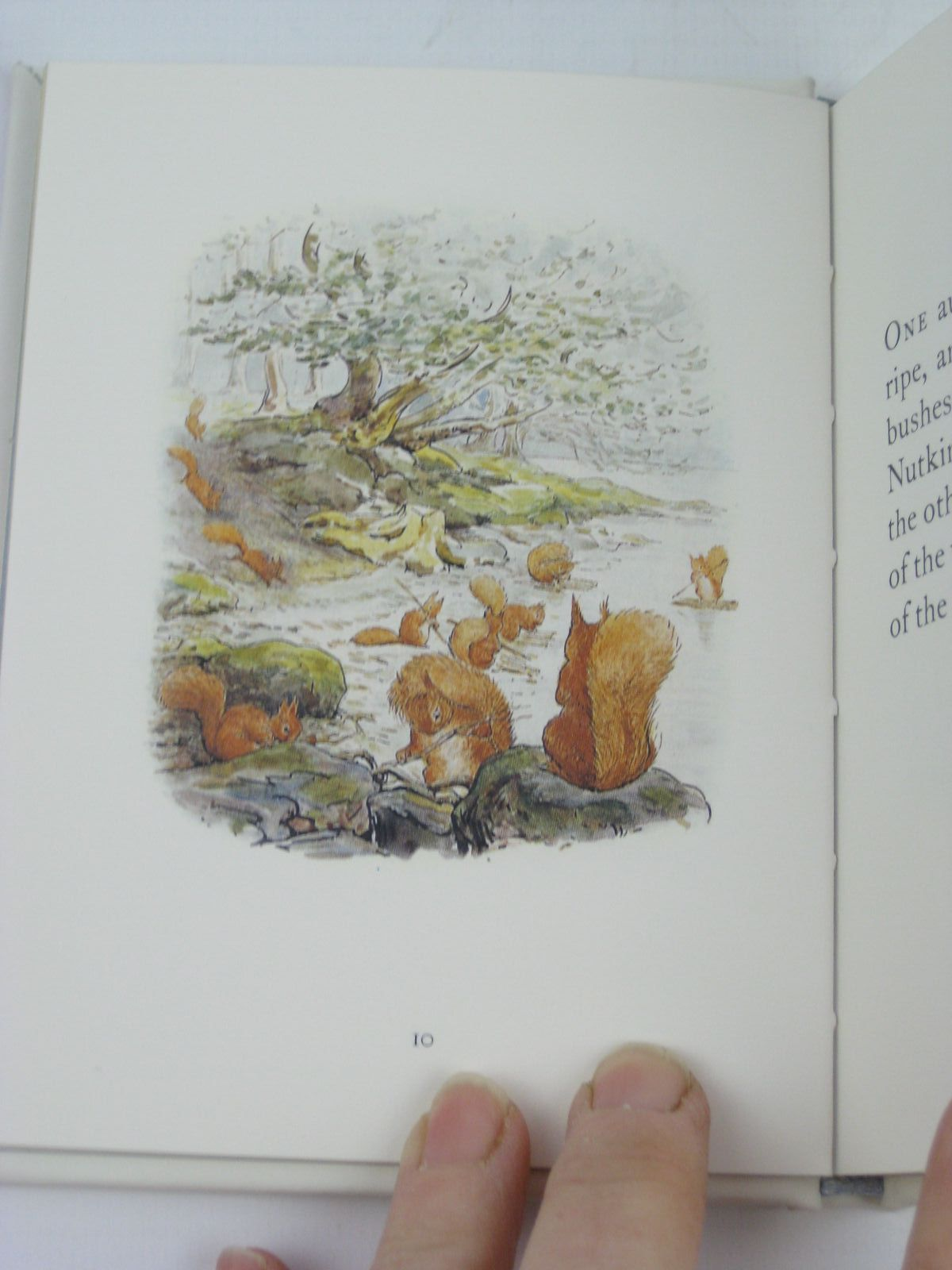 Photo of THE TALE OF SQUIRREL NUTKIN written by Potter, Beatrix illustrated by Potter, Beatrix published by Frederick Warne, The Penguin Group (STOCK CODE: 1316342)  for sale by Stella & Rose's Books