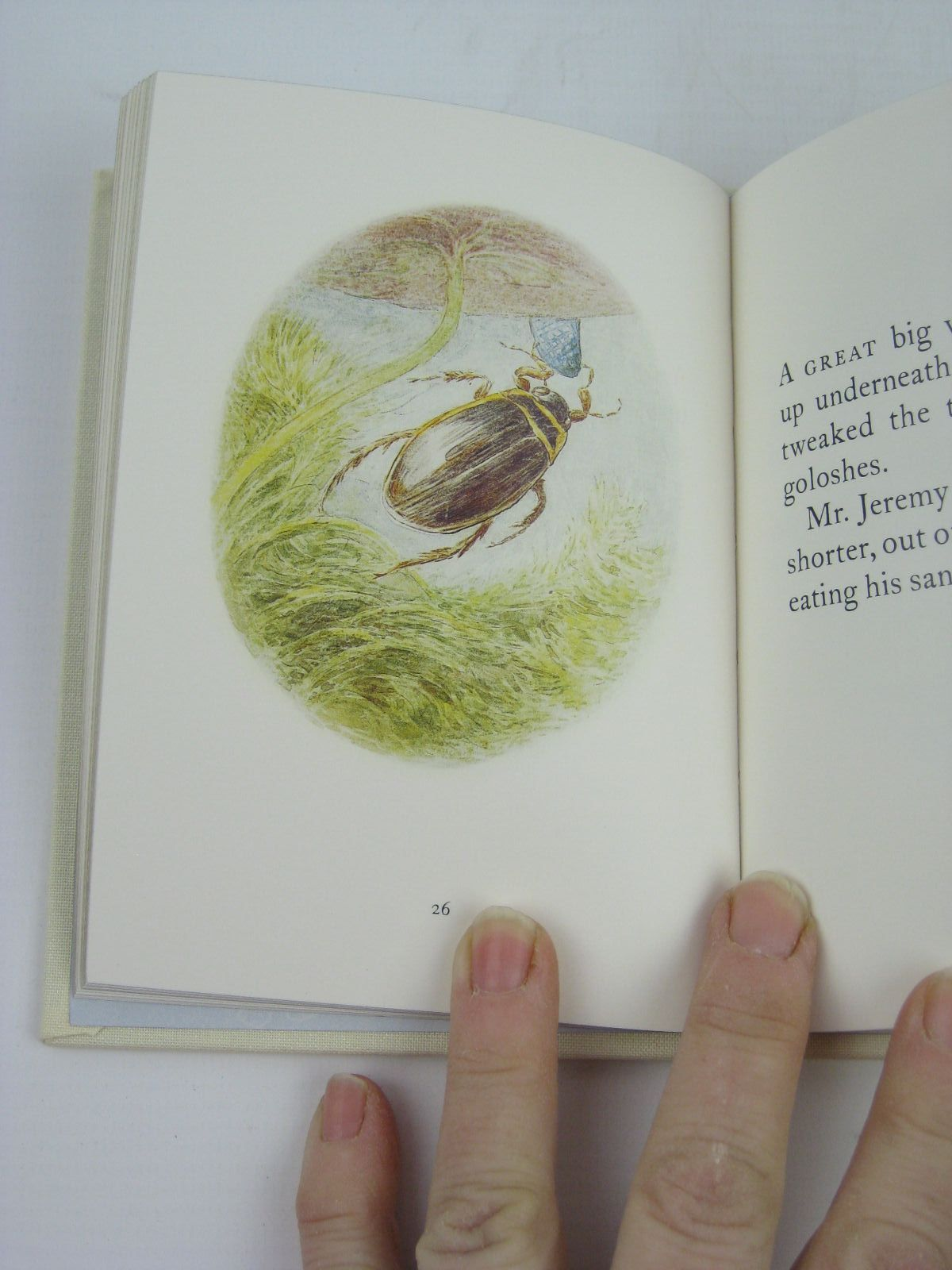 Photo of THE TALE OF MR. JEREMY FISHER written by Potter, Beatrix illustrated by Potter, Beatrix published by Frederick Warne, The Penguin Group (STOCK CODE: 1316349)  for sale by Stella & Rose's Books