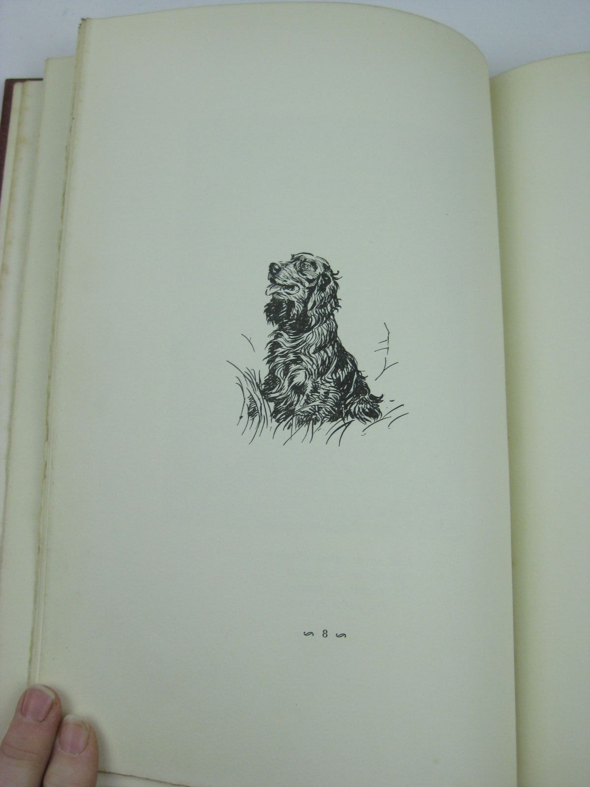 Photo of A DOZEN DOGS OR SO written by Chalmers, Patrick R. illustrated by Aldin, Cecil published by Eyre & Spottiswoode (STOCK CODE: 1316414)  for sale by Stella & Rose's Books