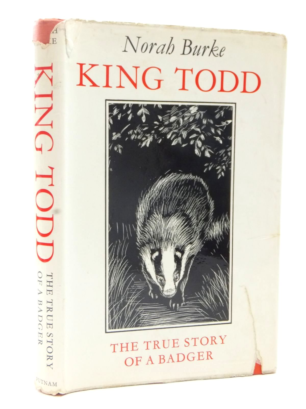 Photo of KING TODD written by Burke, Norah illustrated by BB,  published by Putnam & Co. Ltd. (STOCK CODE: 1317187)  for sale by Stella & Rose's Books