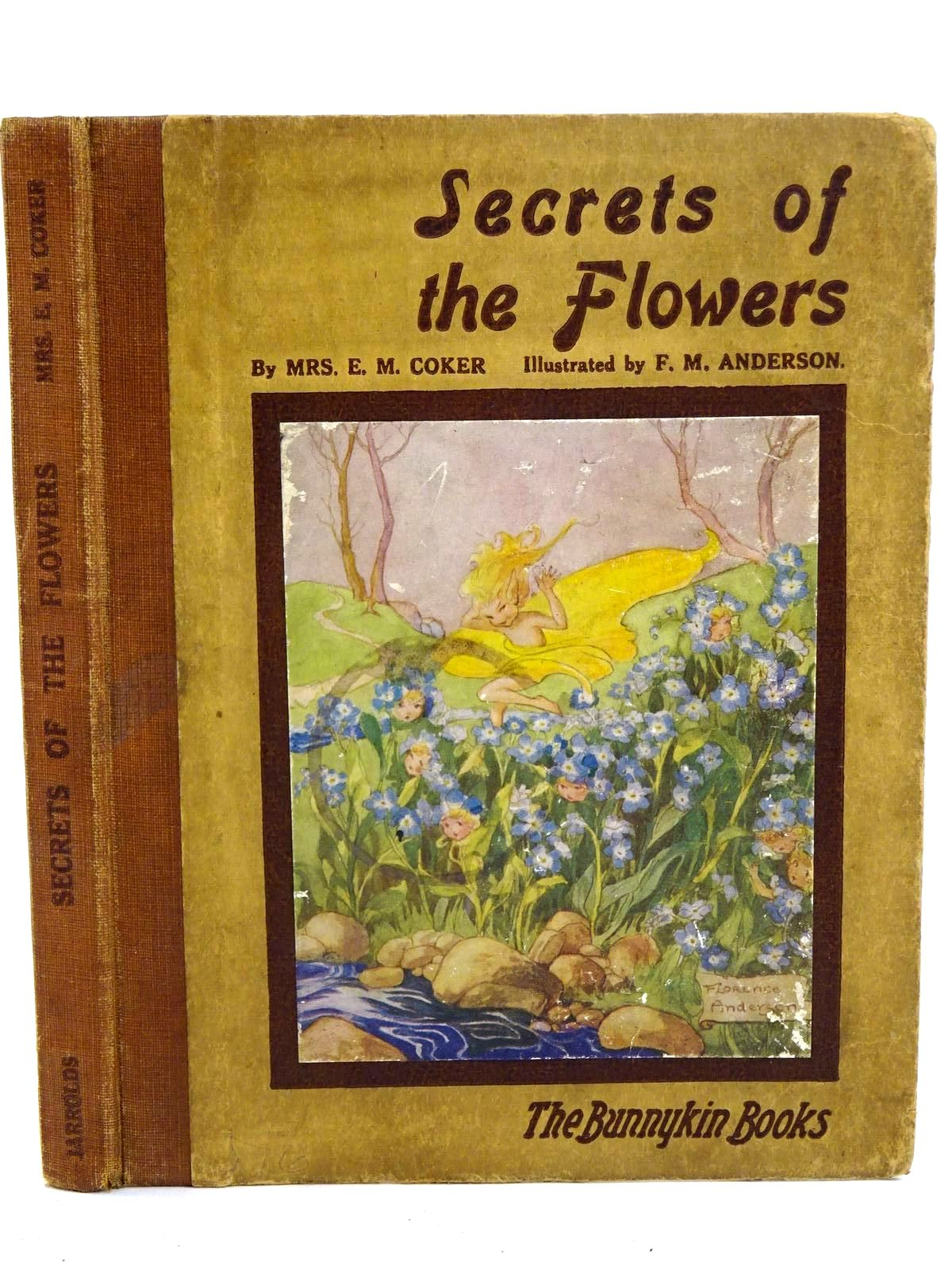 Photo of SECRETS OF THE FLOWERS- Stock Number: 1318324