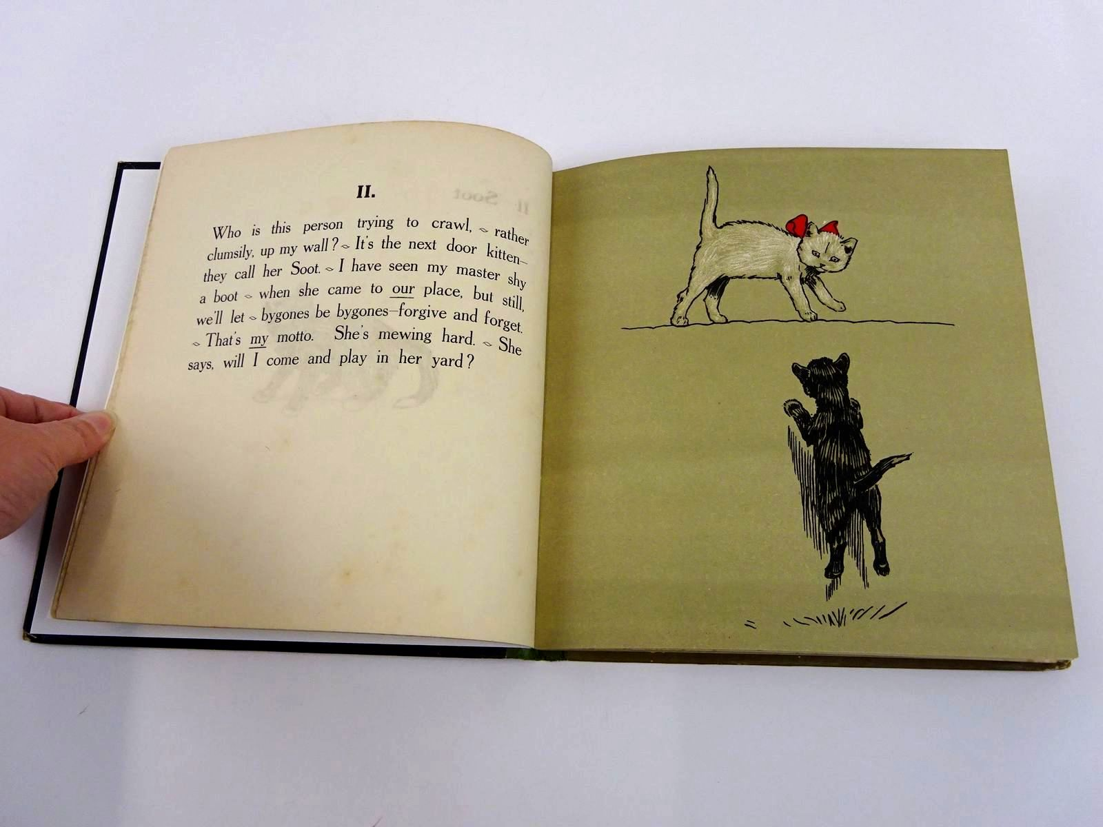 Photo of THE WHITE KITTEN BOOK written by Aldin, Cecil illustrated by Aldin, Cecil published by Henry Frowde, Hodder & Stoughton (STOCK CODE: 1318331)  for sale by Stella & Rose's Books