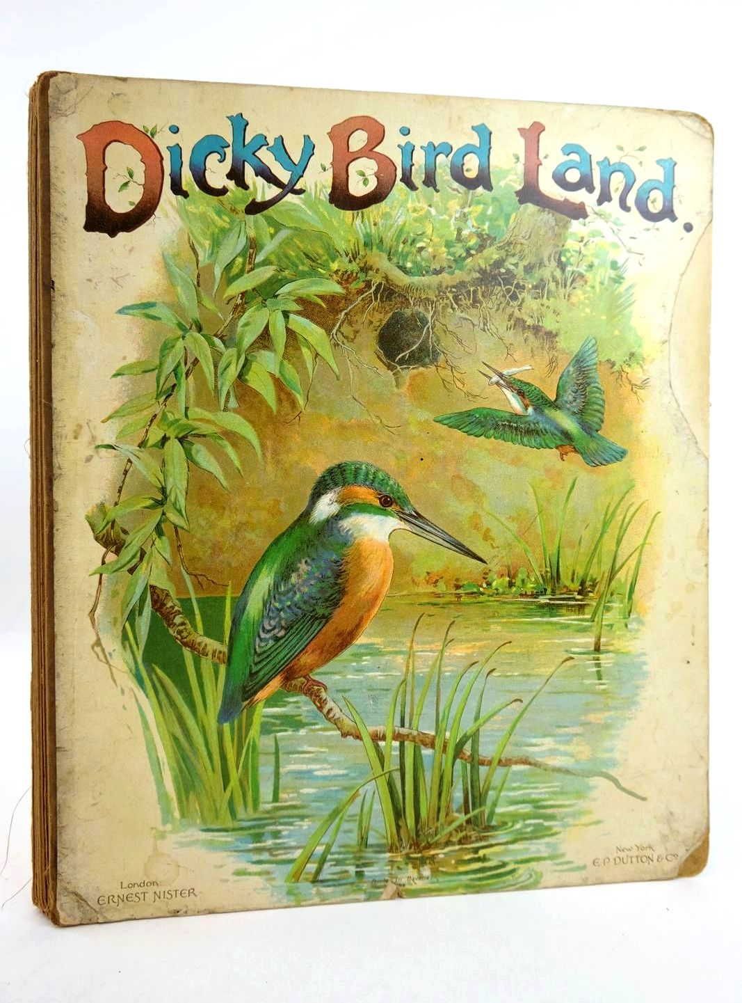 Photo of DICKY BIRD LAND published by Ernest Nister (STOCK CODE: 1318776)  for sale by Stella & Rose's Books