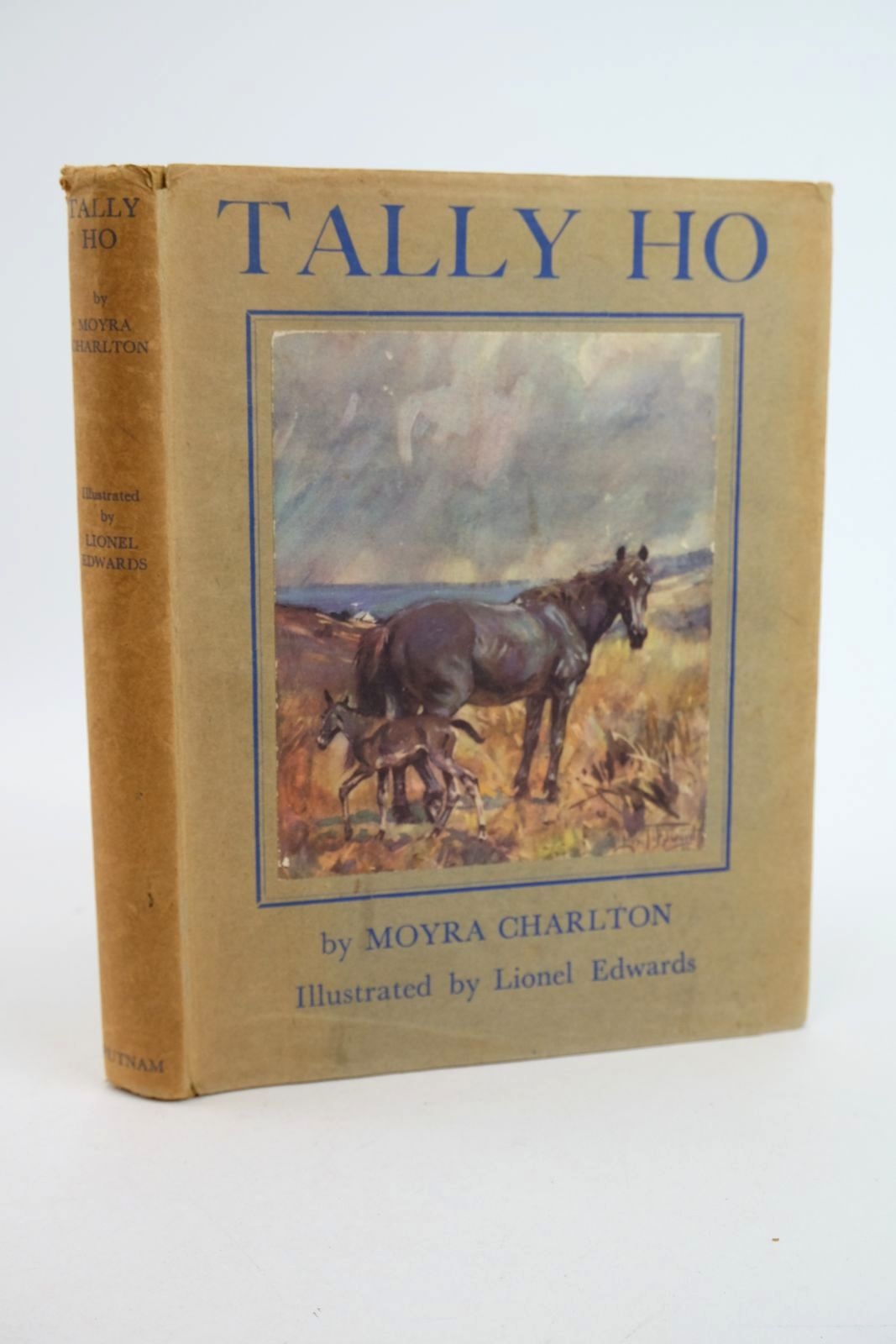 Photo of TALLY HO written by Charlton, Moyra illustrated by Edwards, Lionel published by Putnam (STOCK CODE: 1318891)  for sale by Stella & Rose's Books
