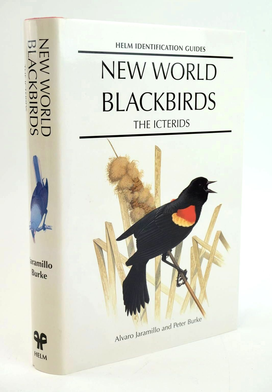 Photo of NEW WORLD BLACKBIRDS: THE ICTERIDS (HELM IDENTIFICATION GUIDES) written by Jaramillo, Alvaro Burke, Peter published by Christopher Helm (STOCK CODE: 1319293)  for sale by Stella & Rose's Books