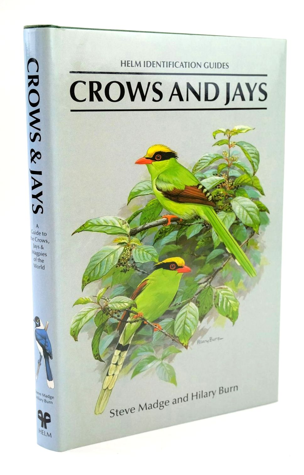 Photo of CROWS AND JAYS (HELM IDENTIFICATION GUIDES) written by Madge, Steve illustrated by Burn, Hilary published by Christopher Helm, A. & C. Black Ltd. (STOCK CODE: 1319297)  for sale by Stella & Rose's Books