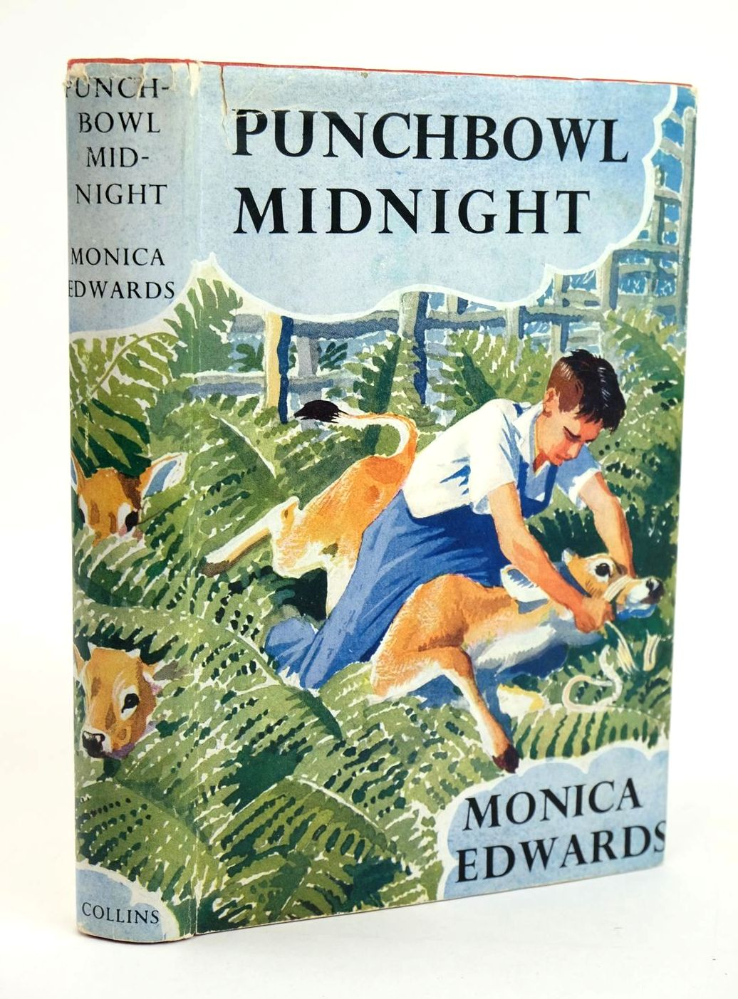 Photo of PUNCHBOWL MIDNIGHT written by Edwards, Monica illustrated by Tunnicliffe, C.F. published by Collins (STOCK CODE: 1319348)  for sale by Stella & Rose's Books