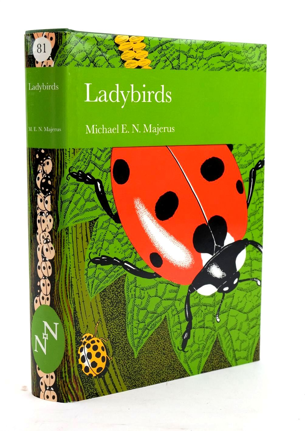 Photo of LADYBIRDS (NN 81)- Stock Number: 1319502