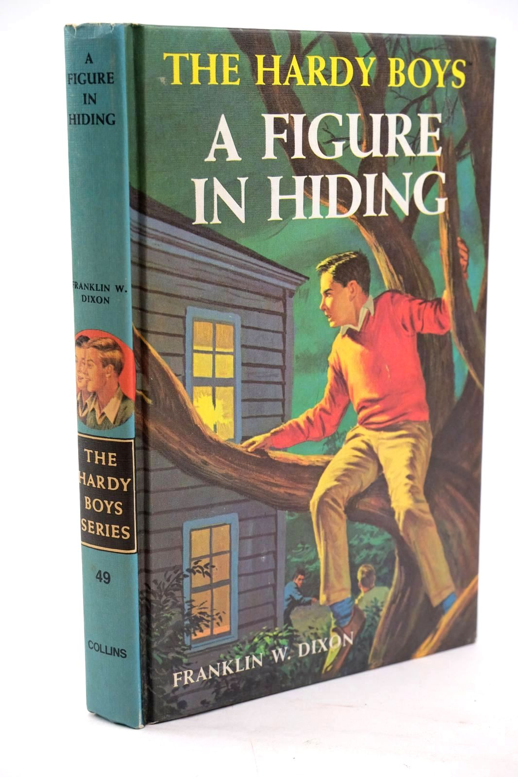 Photo of A FIGURE IN HIDING- Stock Number: 1319515