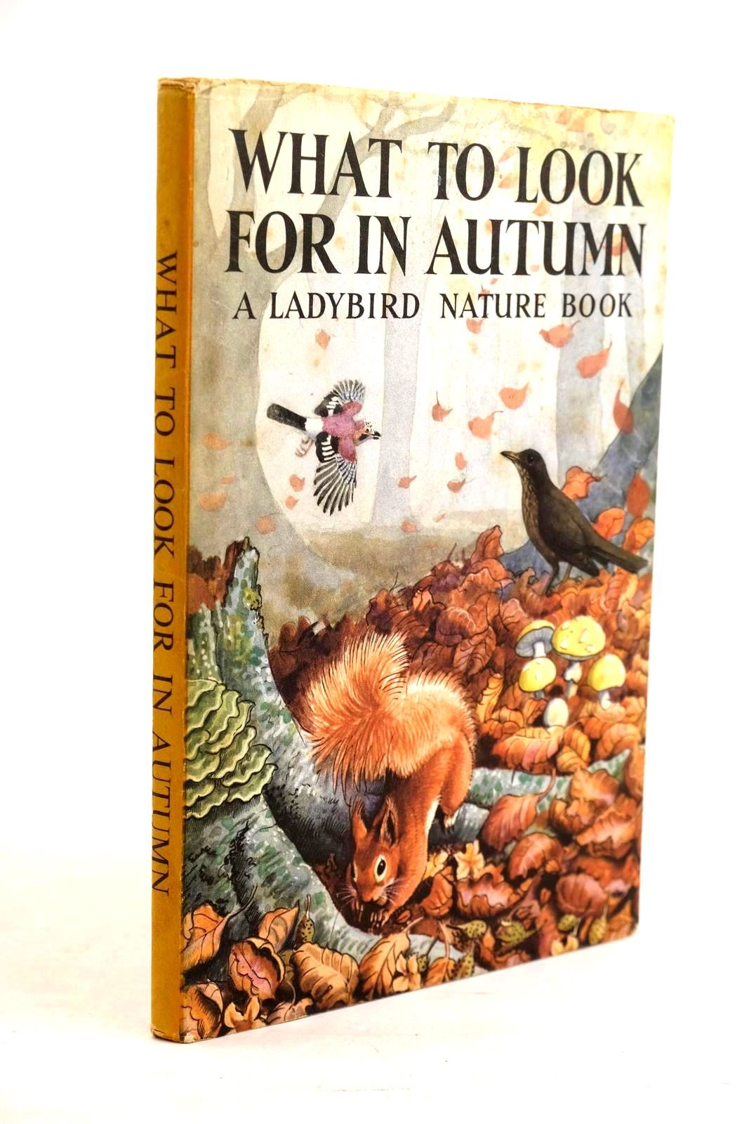 Photo of WHAT TO LOOK FOR IN AUTUMN written by Watson, E.L. Grant illustrated by Tunnicliffe, C.F. published by Wills & Hepworth Ltd. (STOCK CODE: 1320637)  for sale by Stella & Rose's Books