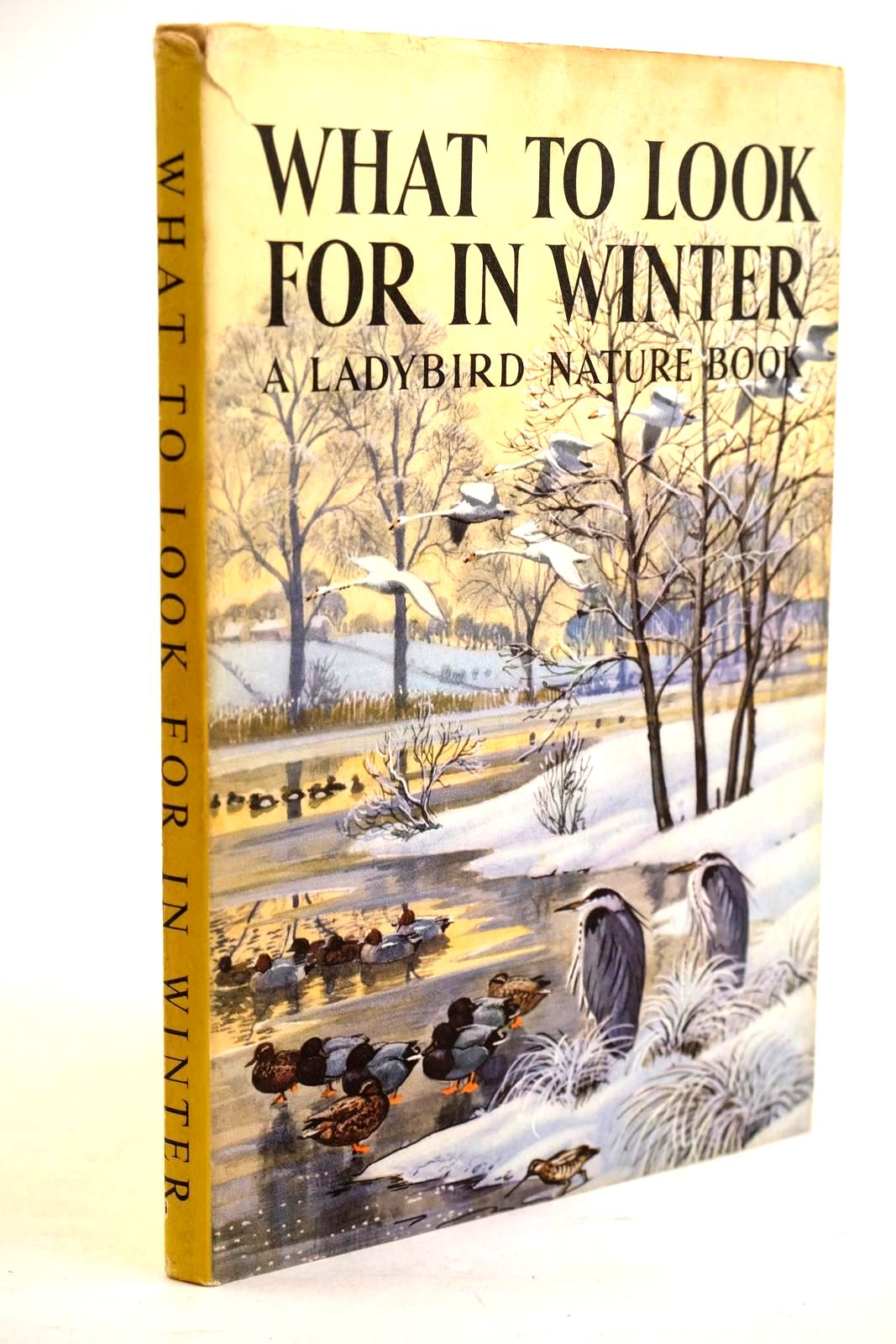 Photo of WHAT TO LOOK FOR IN WINTER written by Watson, E.L. Grant illustrated by Tunnicliffe, C.F. published by Wills & Hepworth Ltd. (STOCK CODE: 1320638)  for sale by Stella & Rose's Books