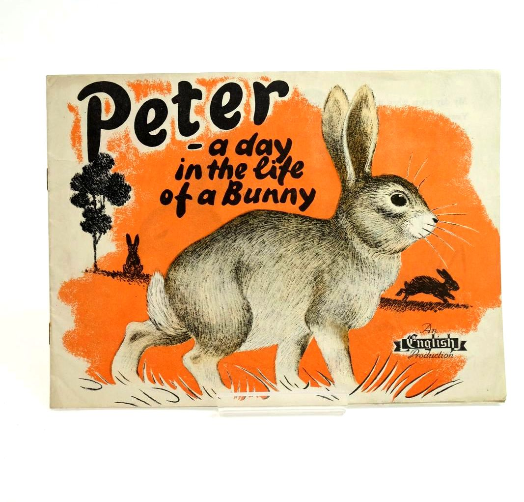 Photo of PETER - A DAY IN THE LIFE OF A BUNNY- Stock Number: 1321699