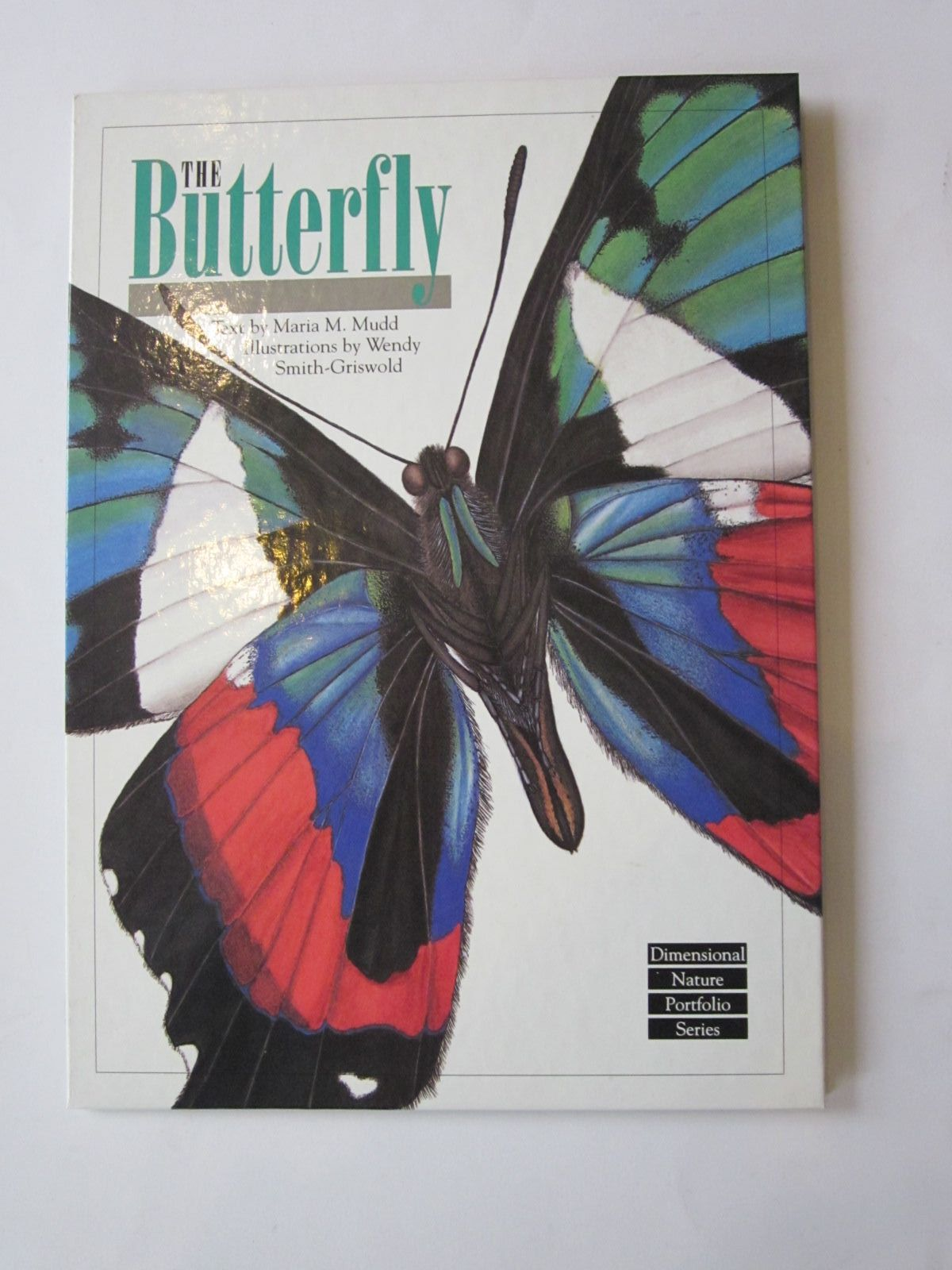 Photo of THE BUTTERFLY- Stock Number: 1401124