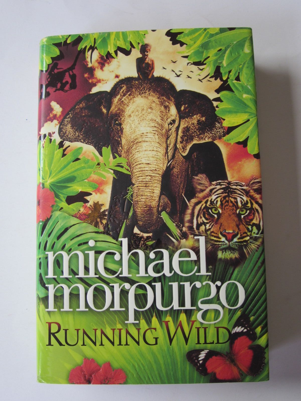 Photo of RUNNING WILD written by Morpurgo, Michael illustrated by Young, Sarah published by Harper Collins Childrens Books (STOCK CODE: 1401261)  for sale by Stella & Rose's Books