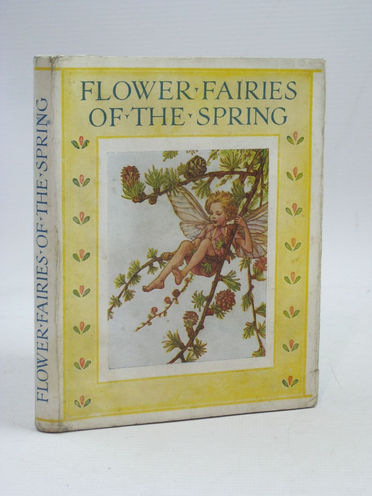 Photo of FLOWER FAIRIES OF THE SPRING- Stock Number: 1405582