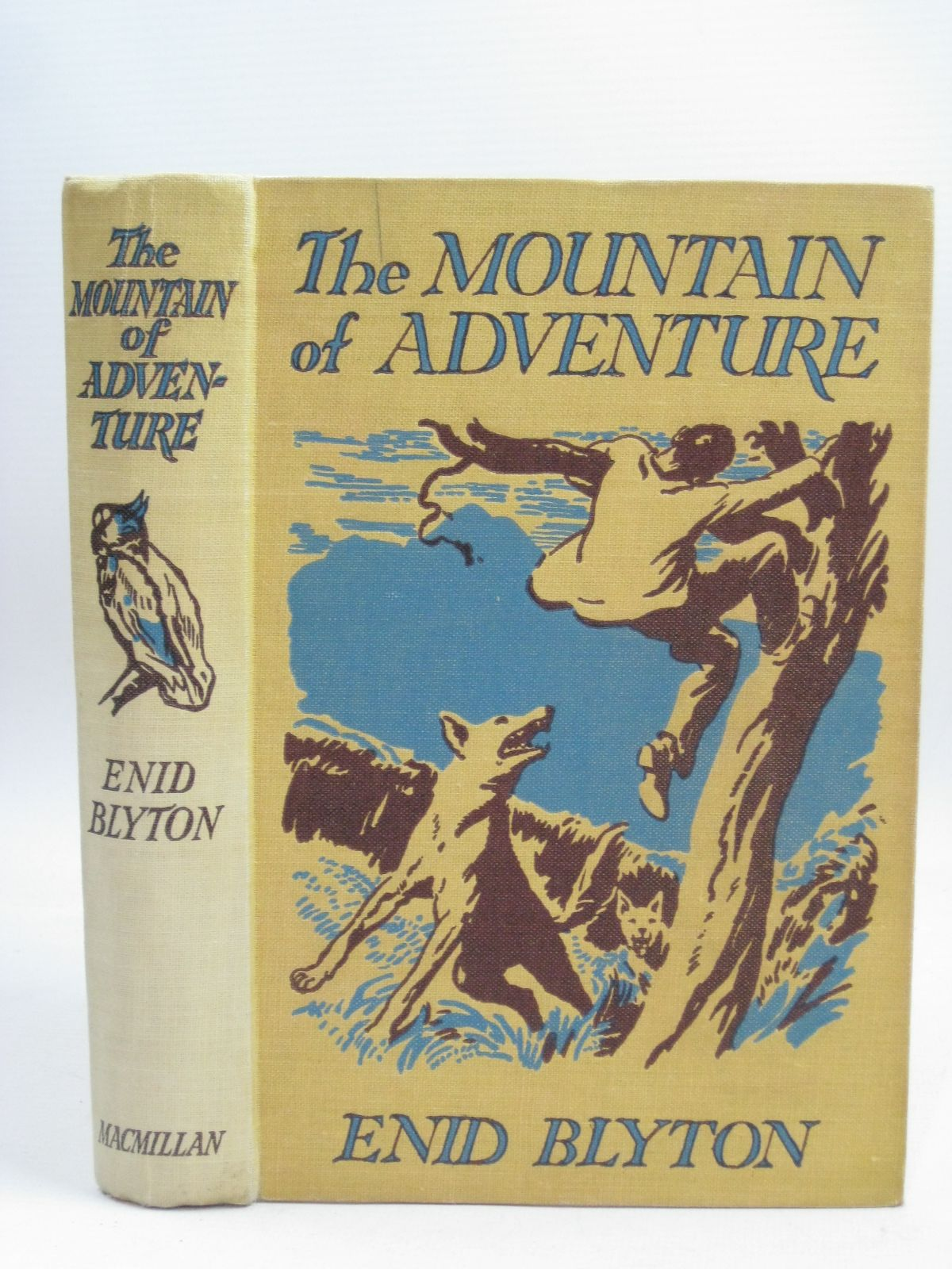 Photo of THE MOUNTAIN OF ADVENTURE written by Blyton, Enid illustrated by Tresilian, Stuart published by Macmillan & Co. Ltd. (STOCK CODE: 1405912)  for sale by Stella & Rose's Books