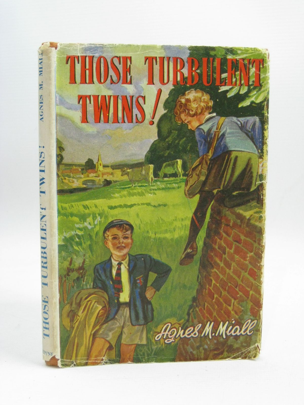 Photo of THOSE TURBULENT TWINS!- Stock Number: 1405954