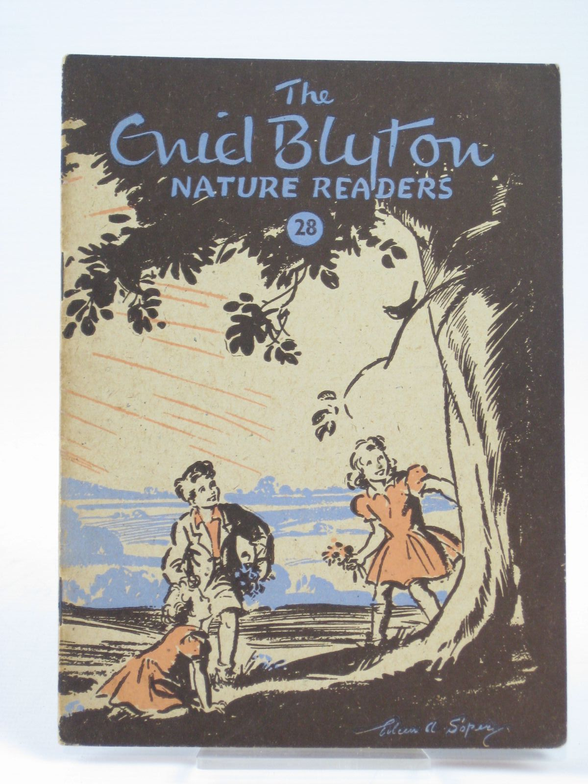 Photo of THE ENID BLYTON NATURE READERS NO. 28 written by Blyton, Enid illustrated by Soper, Eileen published by Macmillan & Co. Ltd. (STOCK CODE: 1406273)  for sale by Stella & Rose's Books