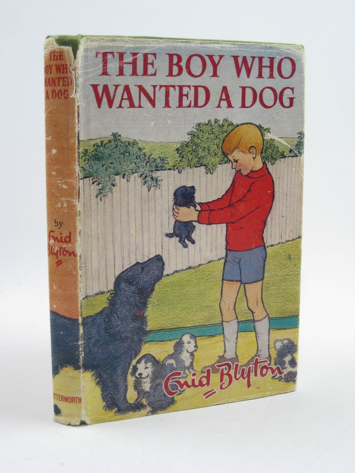 Photo of THE BOY WHO WANTED A DOG written by Blyton, Enid illustrated by Michel, Sally published by Lutterworth Press (STOCK CODE: 1406972)  for sale by Stella & Rose's Books