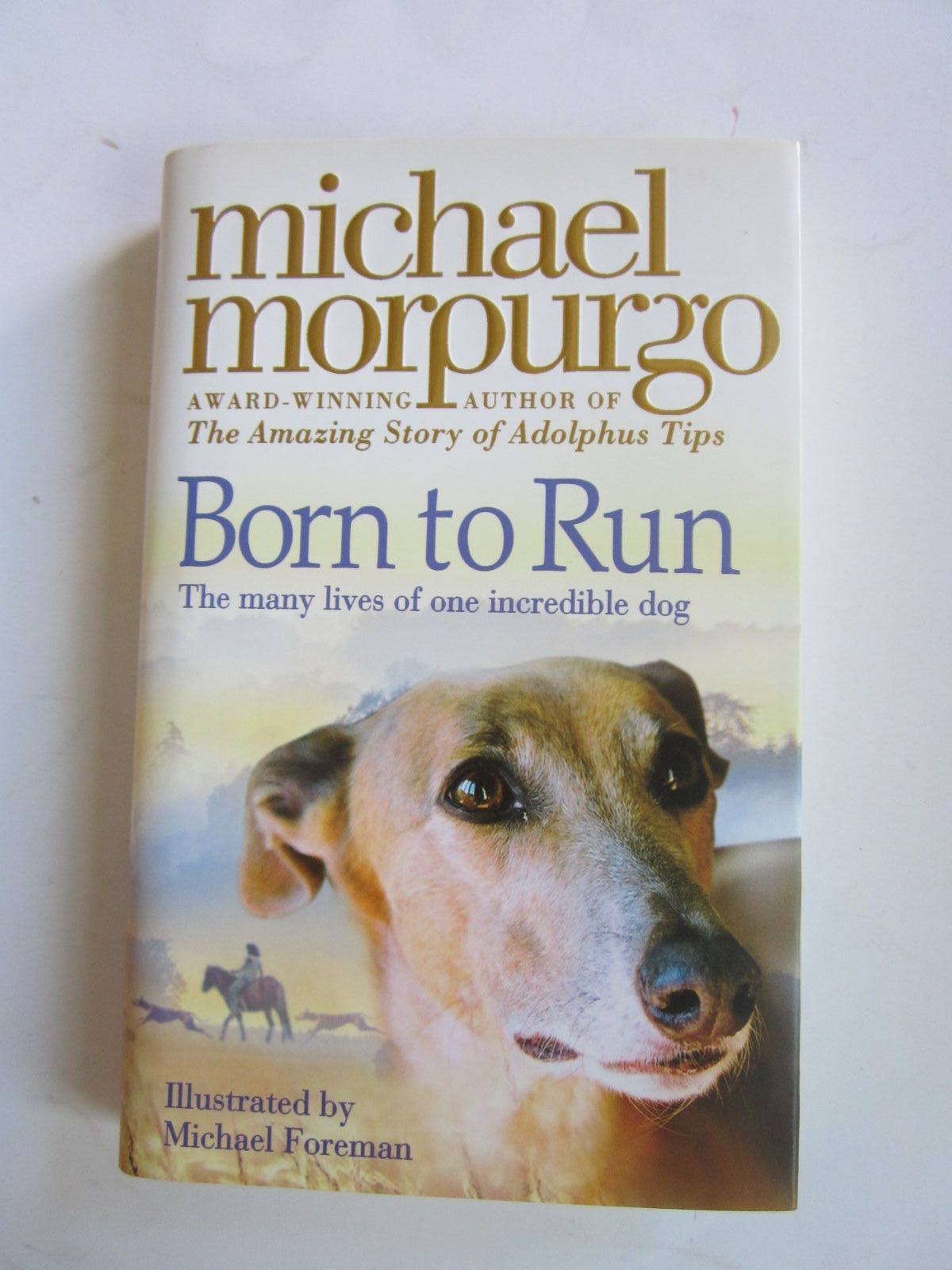 Photo of BORN TO RUN- Stock Number: 1501174