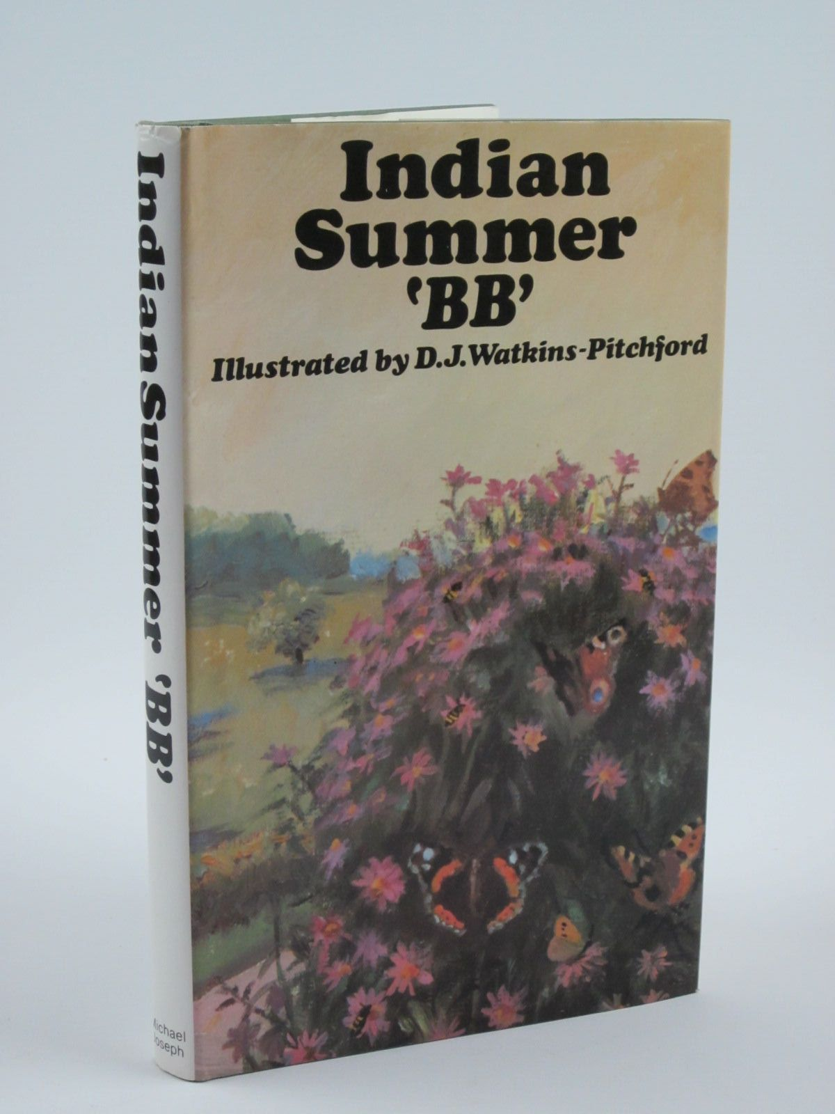 Photo of INDIAN SUMMER written by BB,  illustrated by BB,  published by Michael Joseph (STOCK CODE: 1501276)  for sale by Stella & Rose's Books