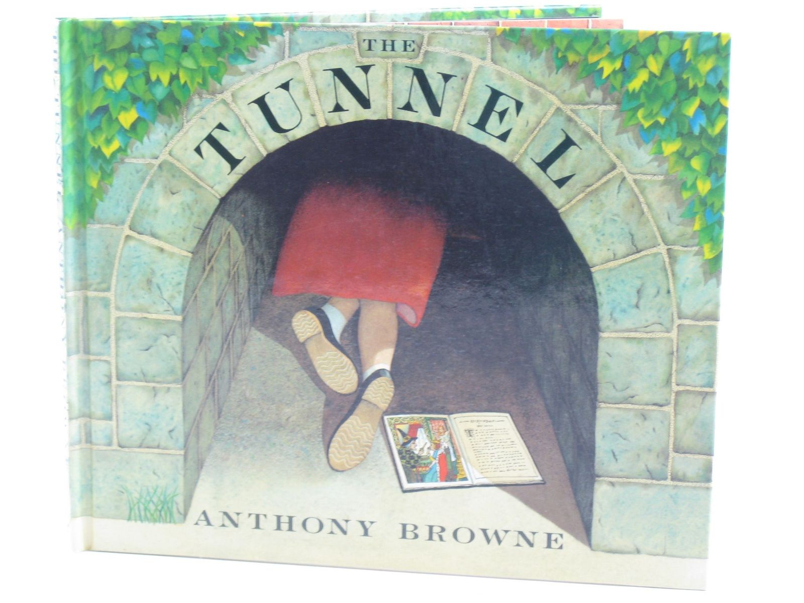 Photo of THE TUNNEL written by Browne, Anthony illustrated by Browne, Anthony published by Julia MacRae Books (STOCK CODE: 1501854)  for sale by Stella & Rose's Books