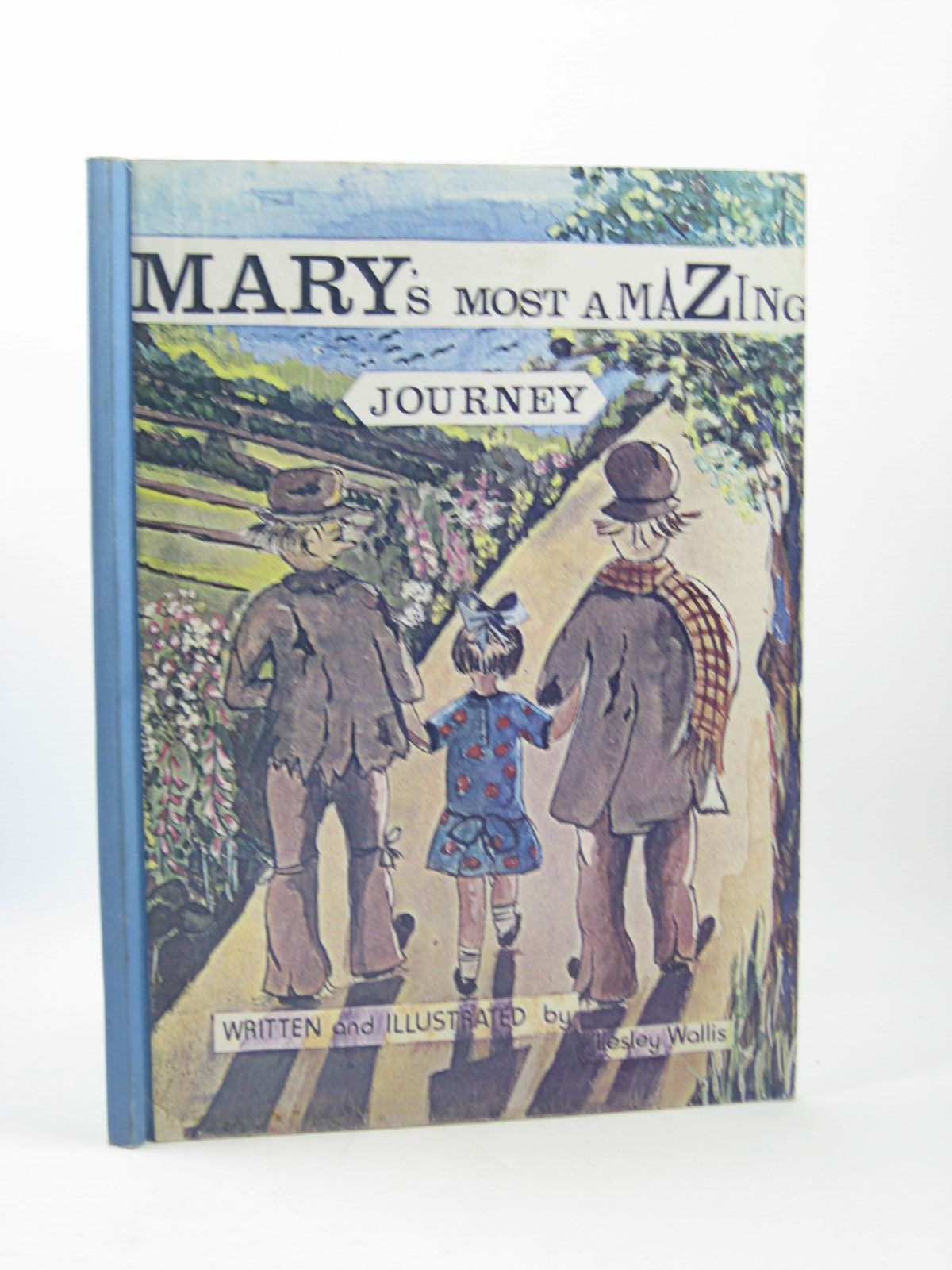 Photo of MARY'S MOST AMAZING JOURNEY written by Wallis, Lesley illustrated by Wallis, Lesley (STOCK CODE: 1502200)  for sale by Stella & Rose's Books