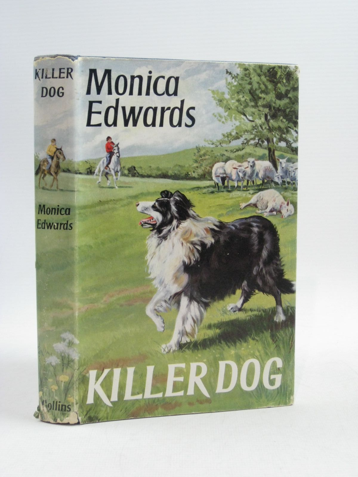 Photo of KILLER DOG written by Edwards, Monica illustrated by Rose, Sheila published by Collins (STOCK CODE: 1504971)  for sale by Stella & Rose's Books