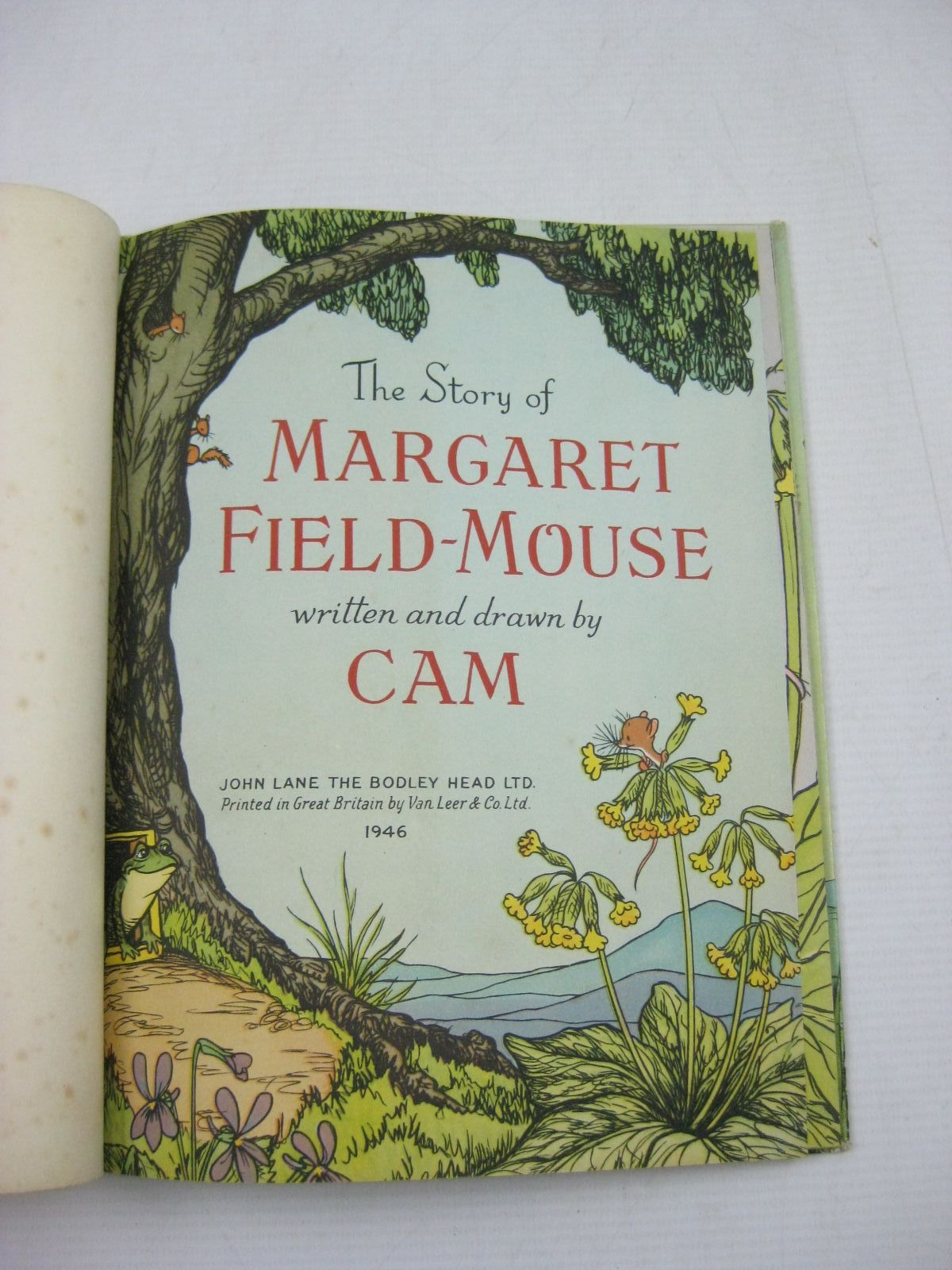 Photo of THE STORY OF MARGARET FIELD-MOUSE- Stock Number: 1504974
