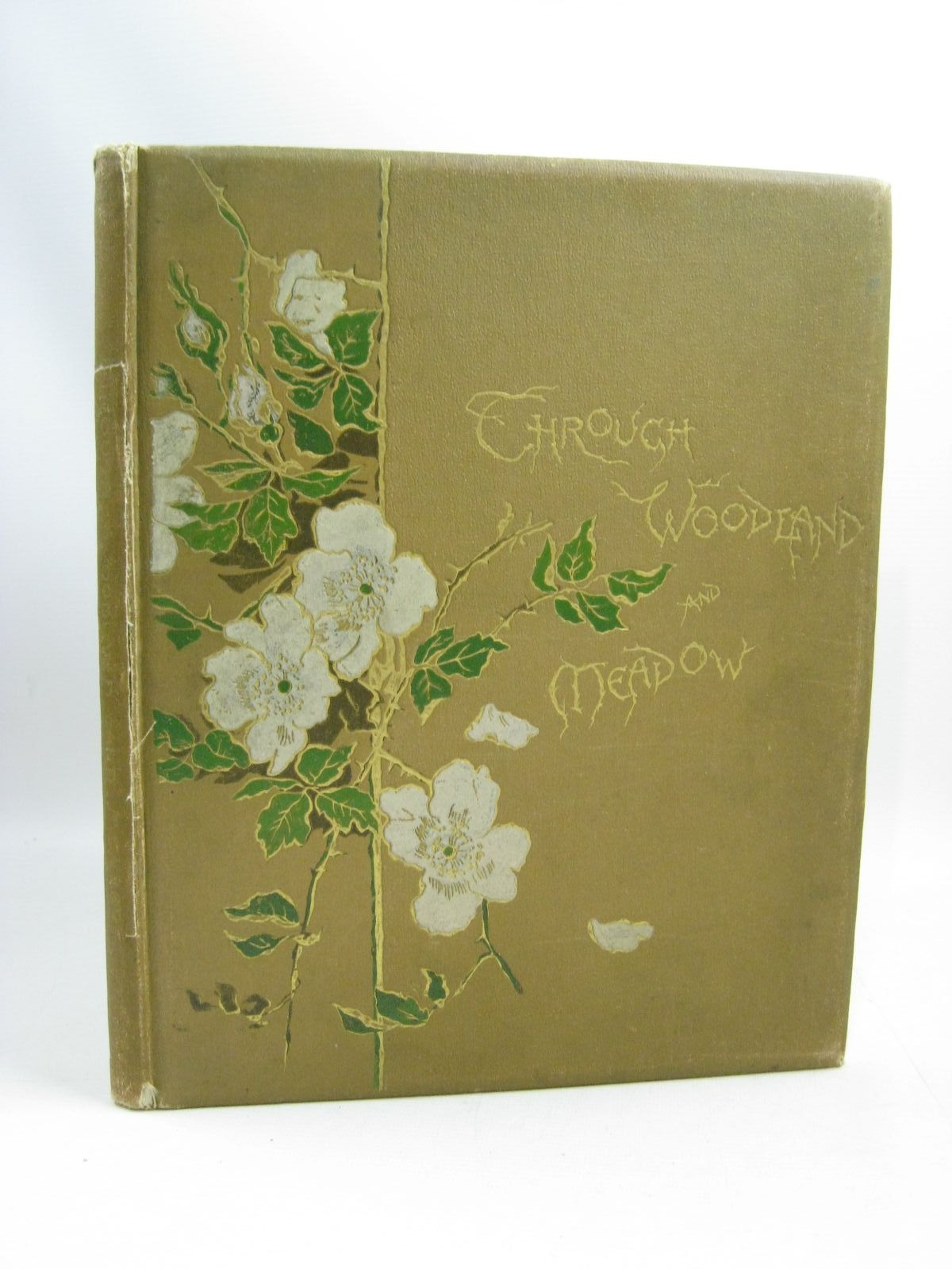 Photo of THROUGH WOODLAND AND MEADOW & OTHER POEMS written by Wood, Helen J. Nesbit, E. Bingham, Clifton illustrated by Low, Marie West, Maud published by Ernest Nister, E.P. Dutton & Co. (STOCK CODE: 1505415)  for sale by Stella & Rose's Books