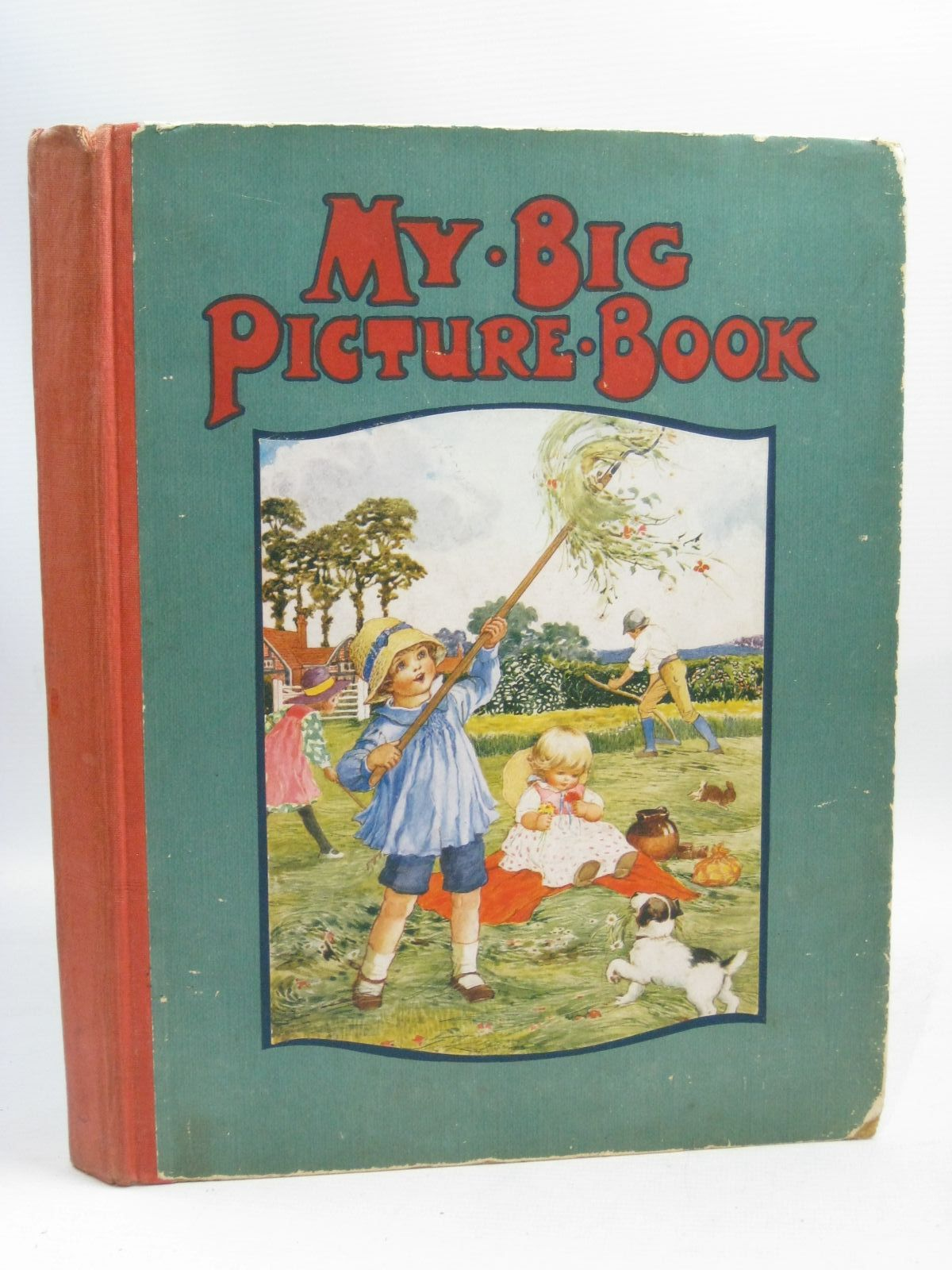 Photo of MY BIG PICTURE BOOK- Stock Number: 1505710