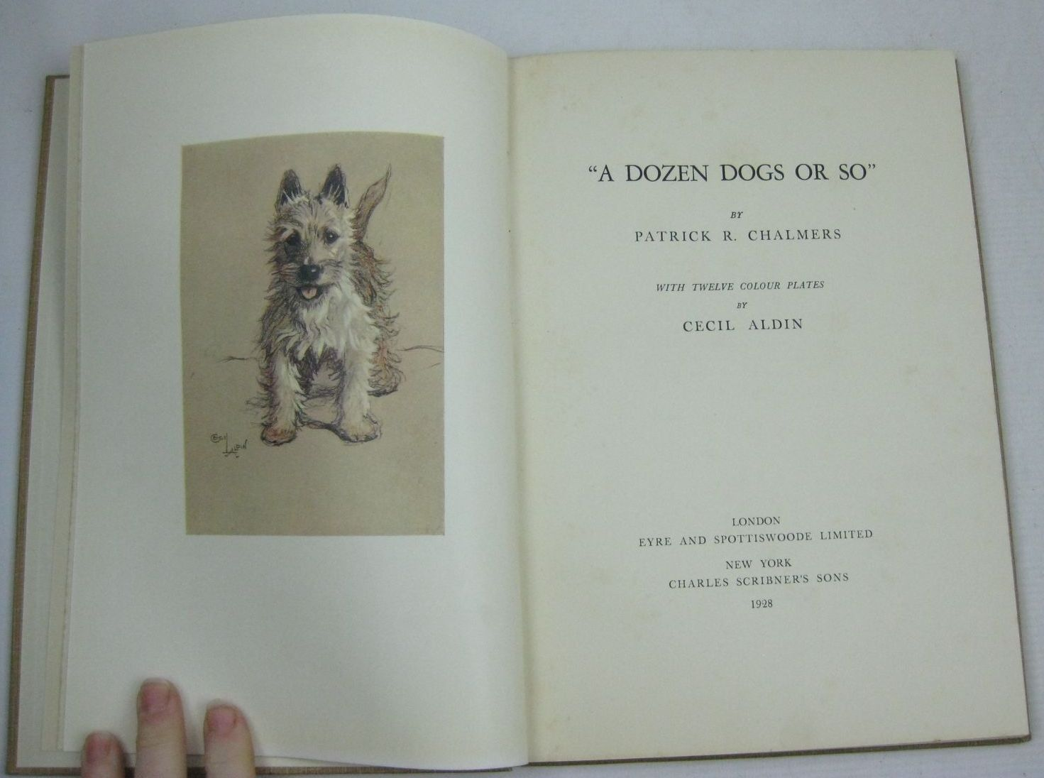 Photo of A DOZEN DOGS OR SO written by Chalmers, Patrick R. illustrated by Aldin, Cecil published by Eyre & Spottiswoode (STOCK CODE: 1506026)  for sale by Stella & Rose's Books