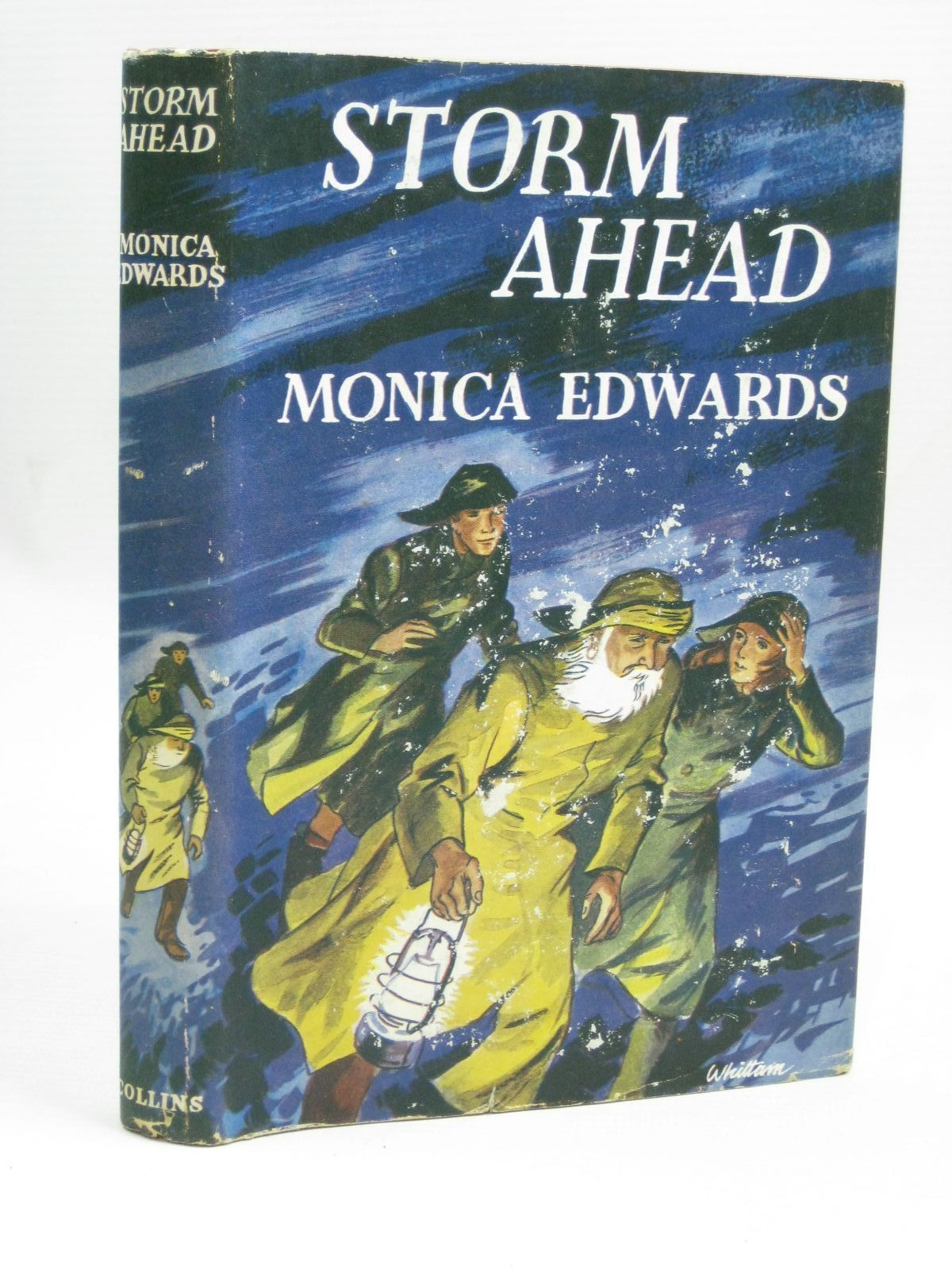 Photo of STORM AHEAD written by Edwards, Monica illustrated by Whittam, Geoffrey published by Collins (STOCK CODE: 1506290)  for sale by Stella & Rose's Books
