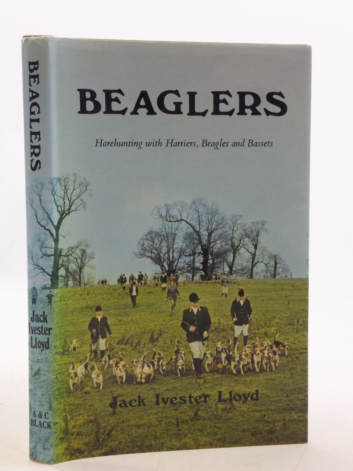 Photo of BEAGLERS- Stock Number: 1605743