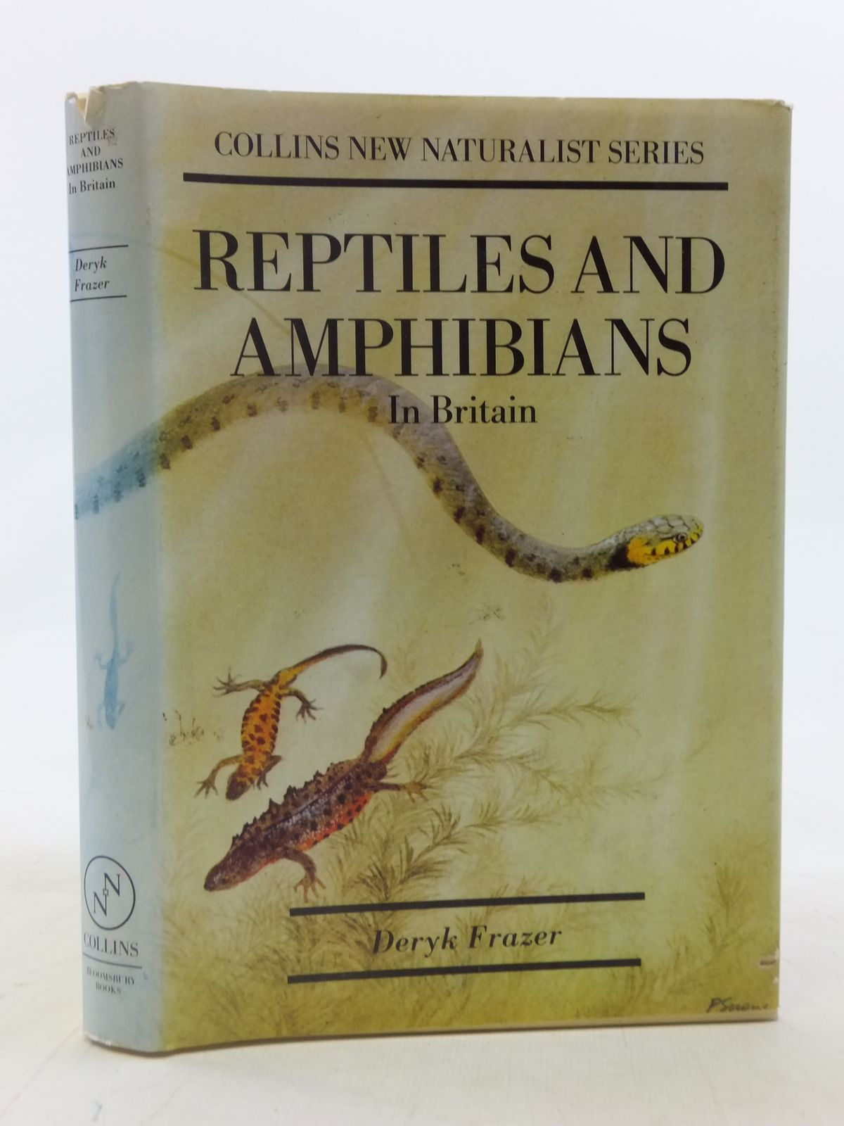 Photo of REPTILES AND AMPHIBIANS IN BRITAIN written by Frazer, Deryk published by Bloomsbury Books (STOCK CODE: 1605824)  for sale by Stella & Rose's Books