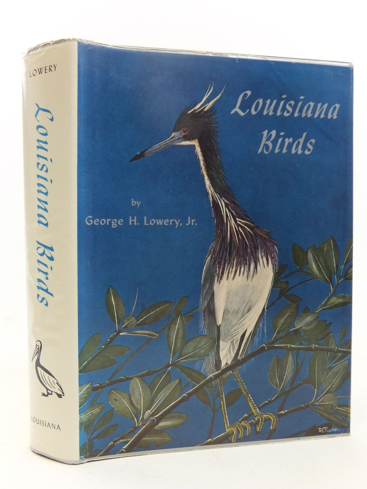 Photo of LOUISIANA BIRDS written by Lowery, George H. illustrated by Tucker, Robert E. published by Louisiana State University Press (STOCK CODE: 1607345)  for sale by Stella & Rose's Books