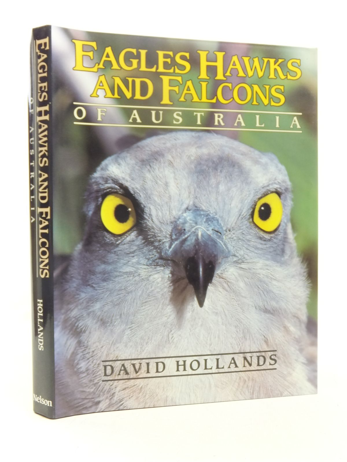 Photo of EAGLES, HAWKS AND FALCONS OF AUSTRALIA- Stock Number: 1607370