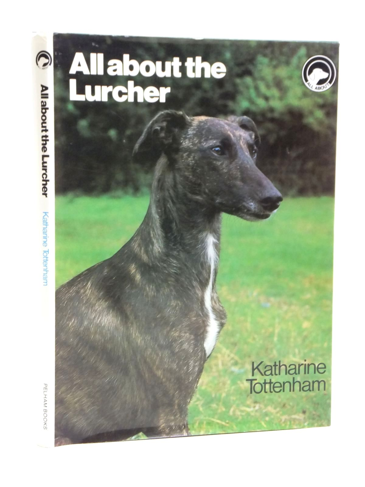 Photo of ALL ABOUT THE LURCHER- Stock Number: 1608026