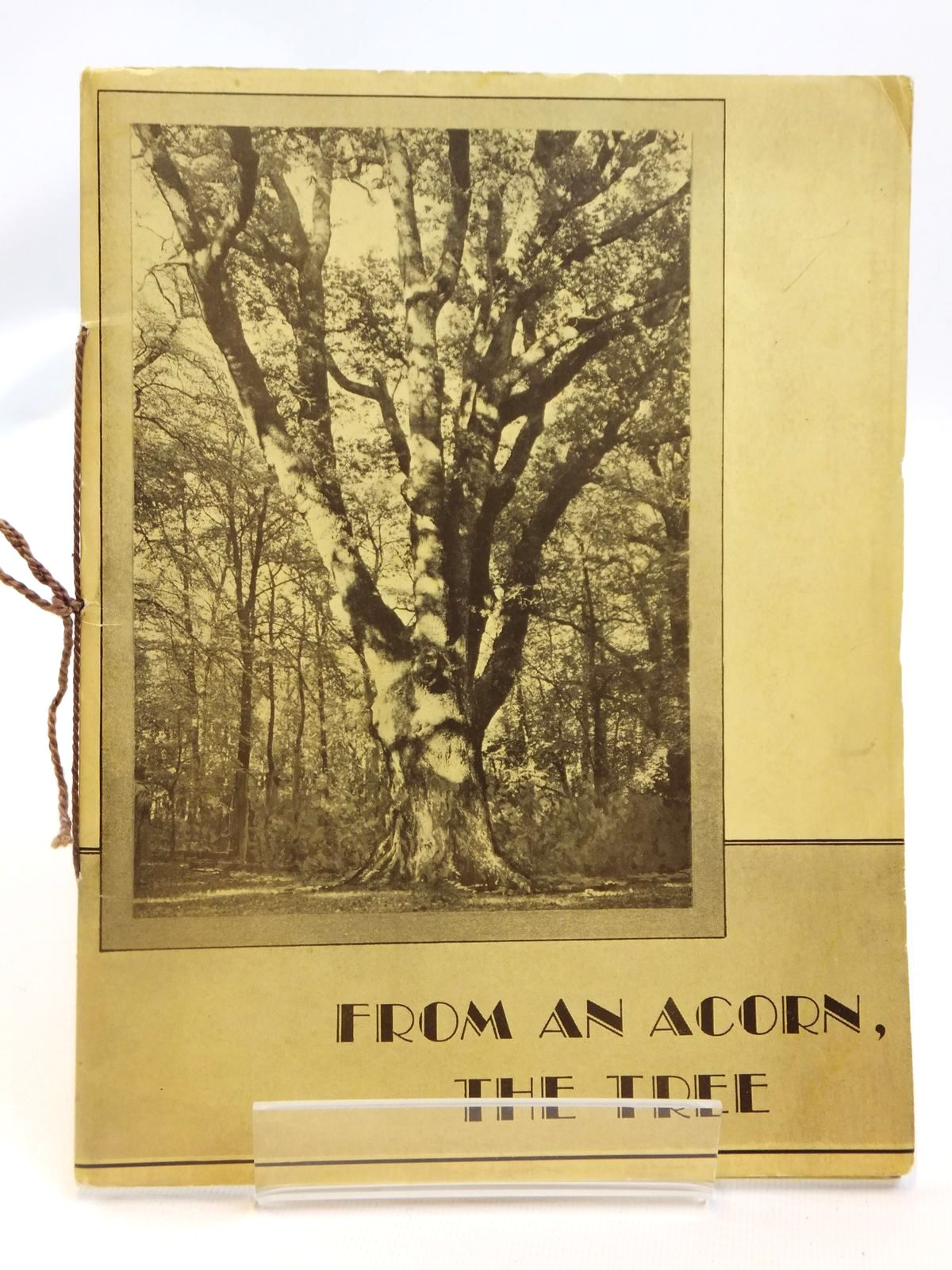 Photo of FROM AN ACORN, THE TREE written by Lewis, Harry (STOCK CODE: 1608341)  for sale by Stella & Rose's Books