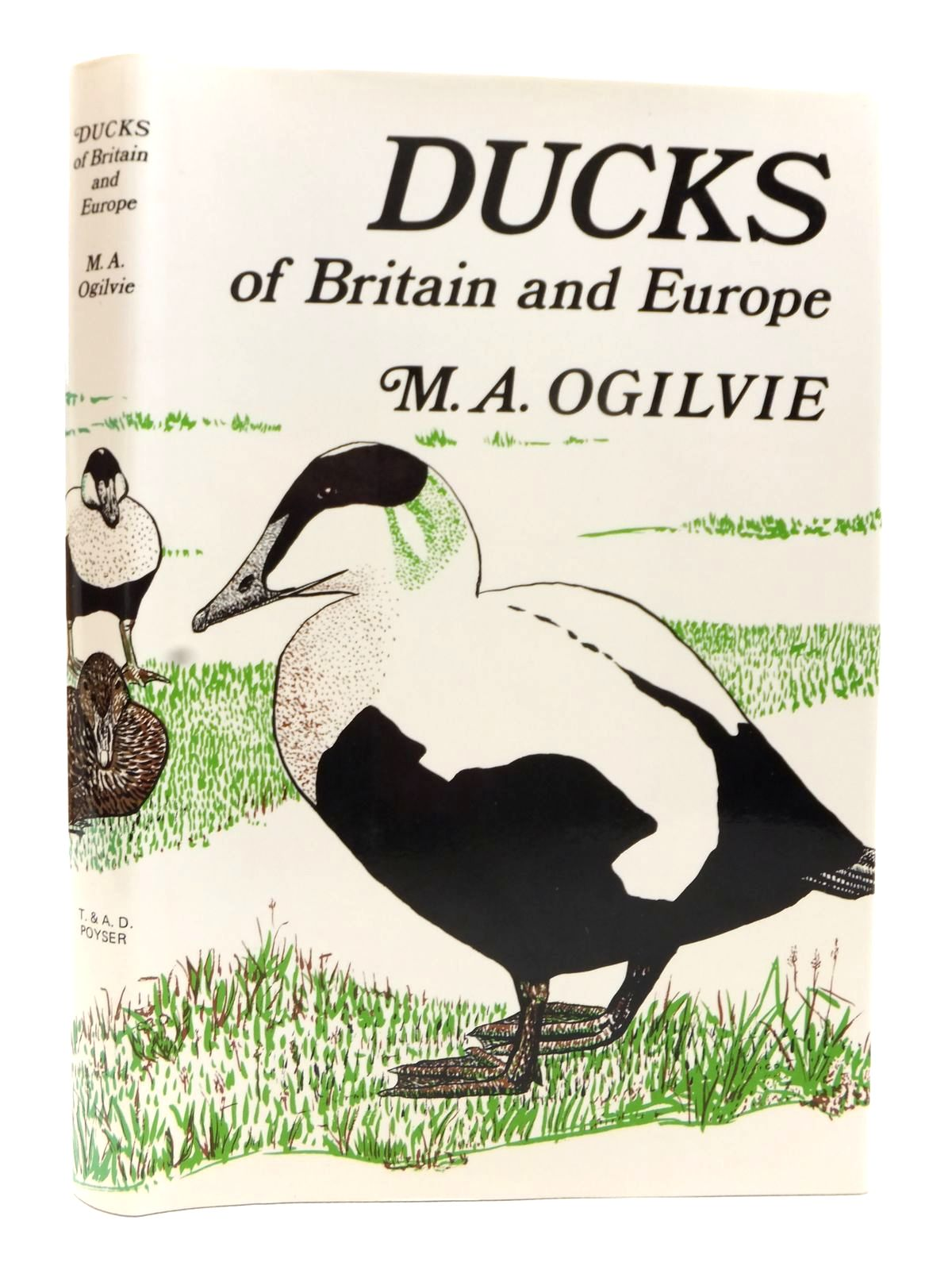 Photo of DUCKS OF BRITAIN AND EUROPE written by Ogilvie, Malcolm A. illustrated by Ogilvie, Carol published by T. & A.D. Poyser (STOCK CODE: 1608989)  for sale by Stella & Rose's Books