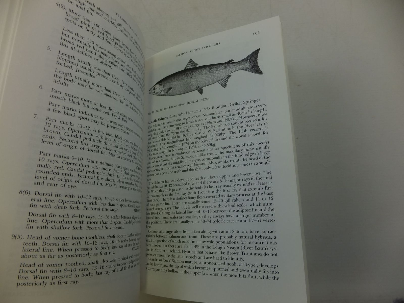 Photo of FRESHWATER FISHES OF THE BRITISH ISLES (NN 75) written by Maitland, Peter S. Campbell, R. Niall published by Harper Collins (STOCK CODE: 1708162)  for sale by Stella & Rose's Books